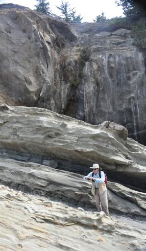 Dr. John Armentrout 'in situ' in the Coaledo area