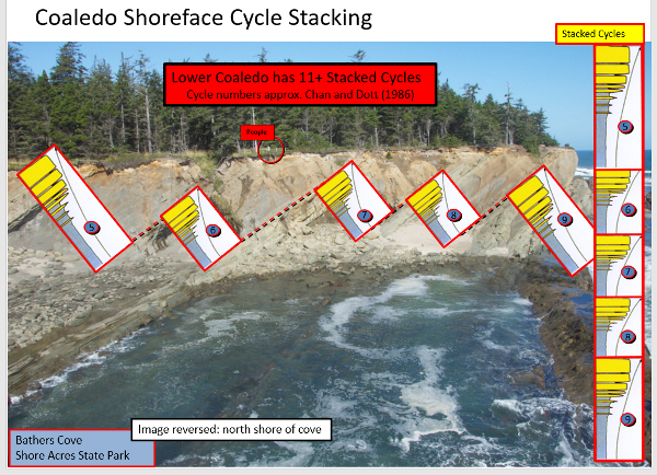 Image description: Coarsening upward cycles in the deposits in Sunset Bay. Source: John Armentrout and the Coaledo Project team.