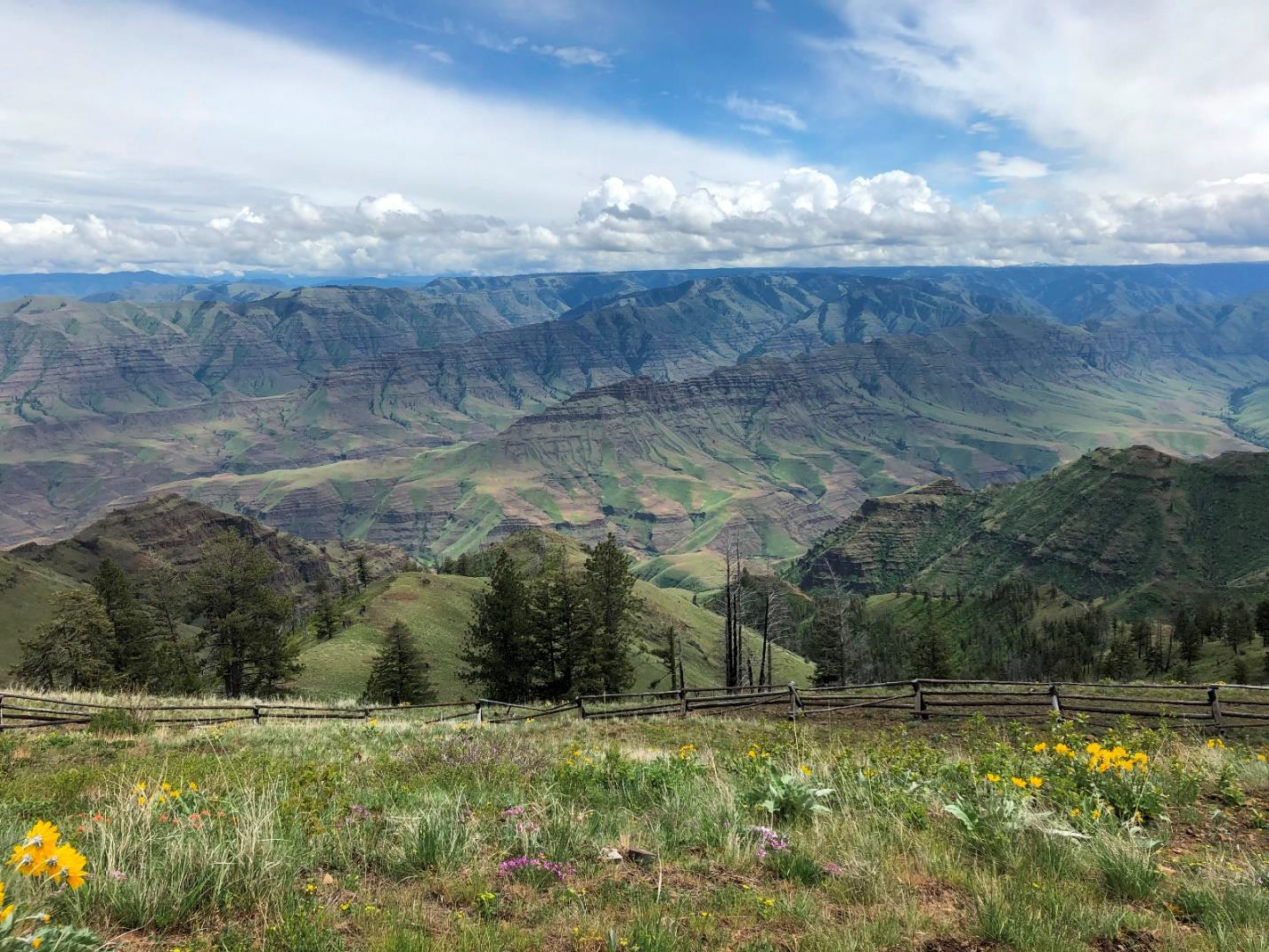 I'll begin this article with a picture of the Buckhorn Overlook taken on May 18, 2019, when Evelyn Bennett, Julia Lanning and I did the reconnaissance for the Wallowa trip.