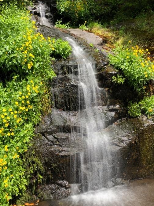 Waterfall cutting through gabbro sill.