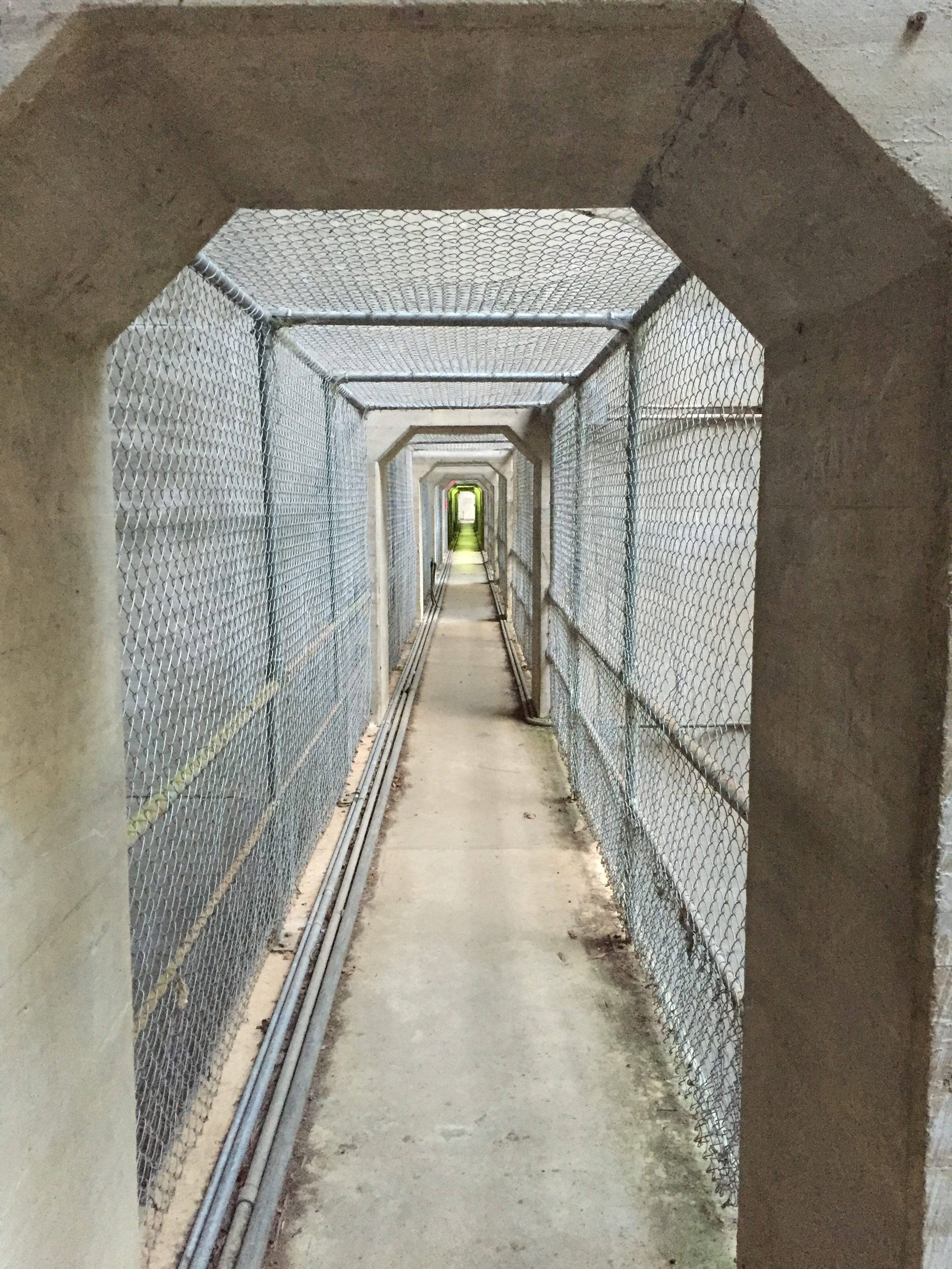 Through the dam wall...