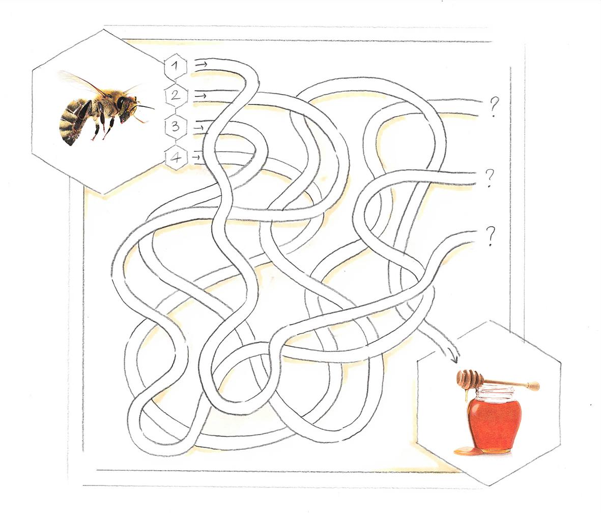labirinto-disegno-composto-lowres.jpg