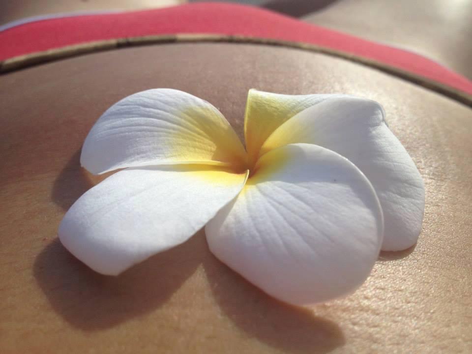 Belly flower.jpg