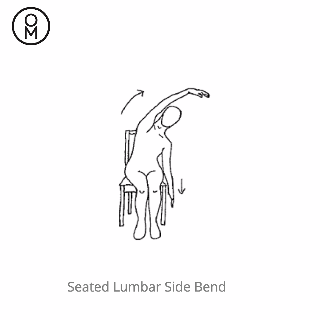 Chair Yoga Seated Lumbar Side Bend.png