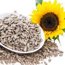 sunflower seeds.jpeg