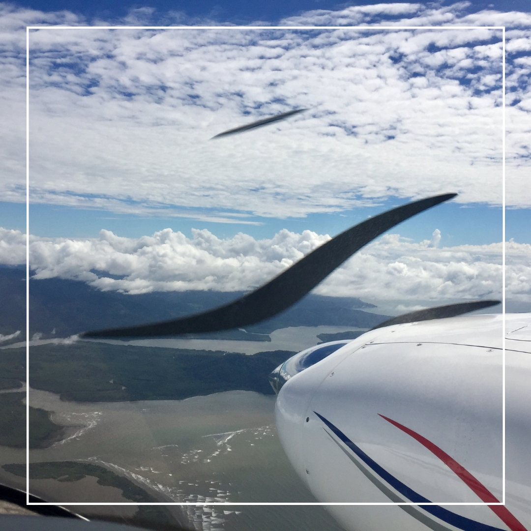 flying week.jpg
