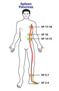 stomach meridian