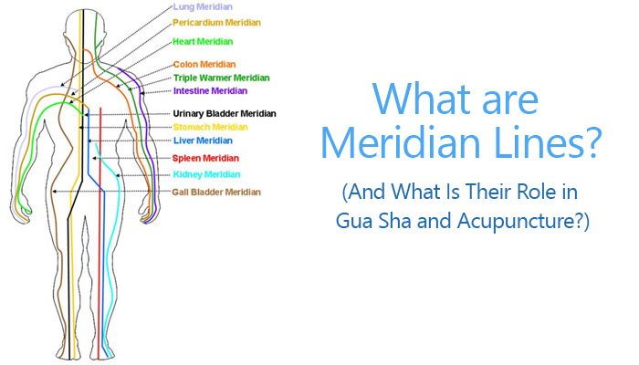 https://blog.sidekicktool.com/what-are-meridian-lines-and-what-is-their-role-in-gua-sha-and-acupuncture/
