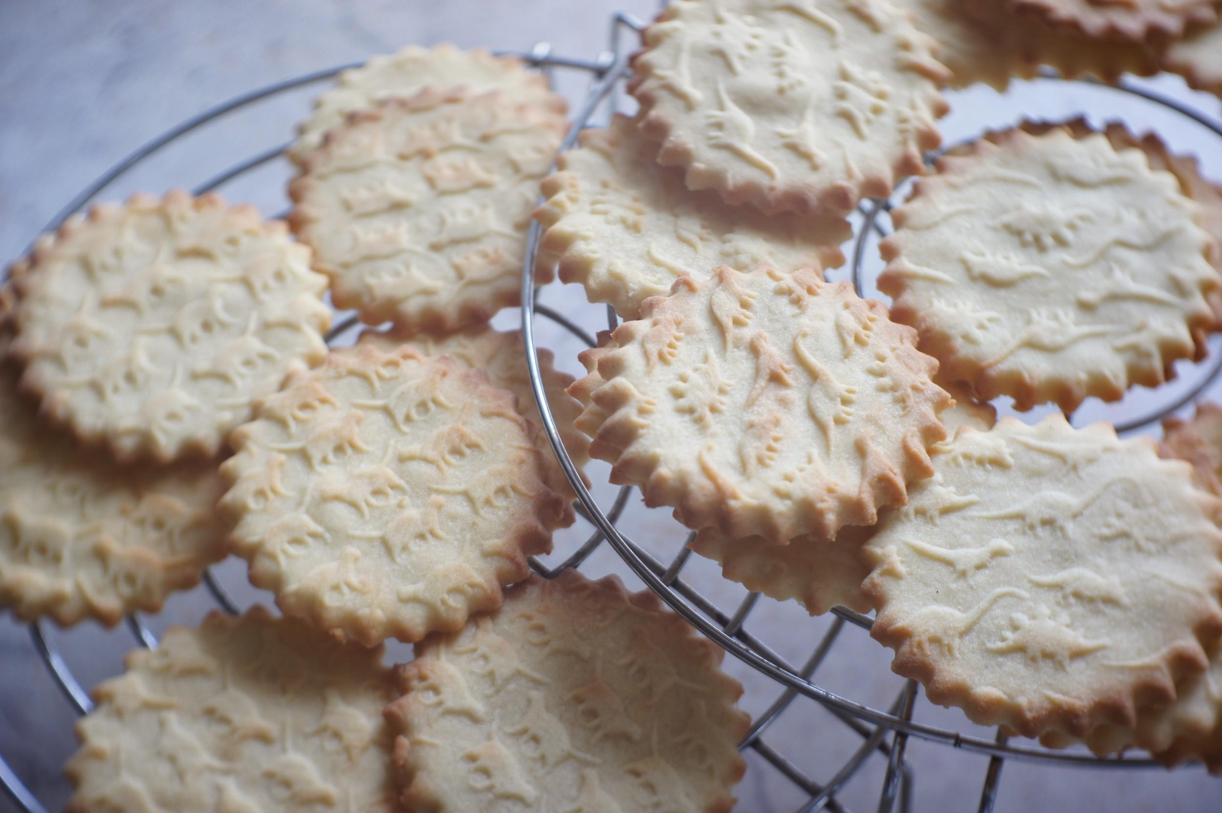 Delicious dinosaur cookies !