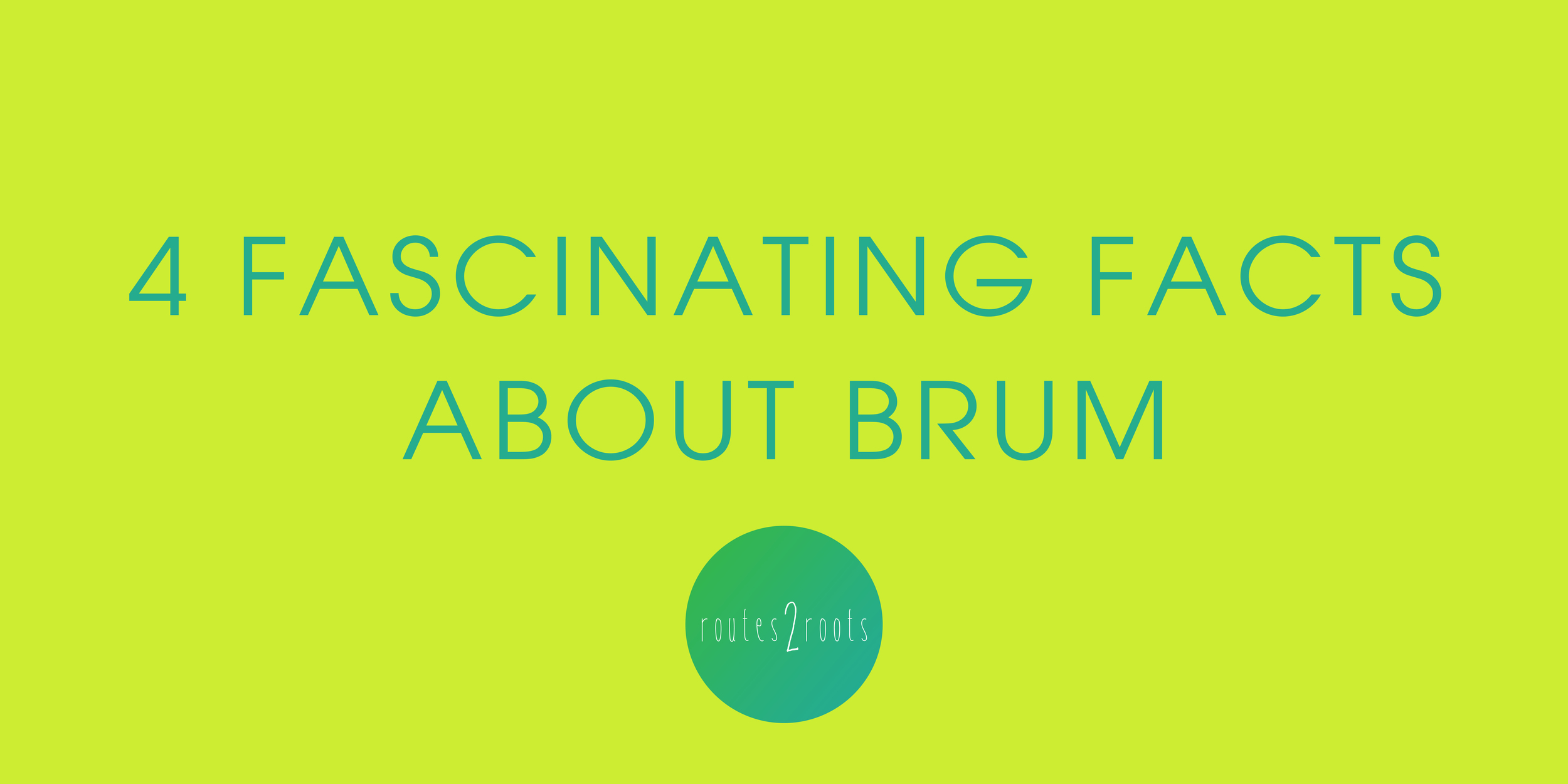 Four fascinating facts about Brum -Elise Turner
