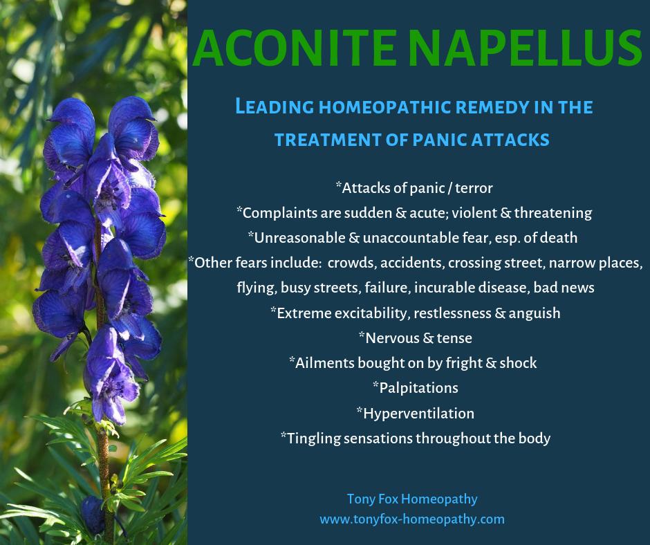 Aconte napellus.png