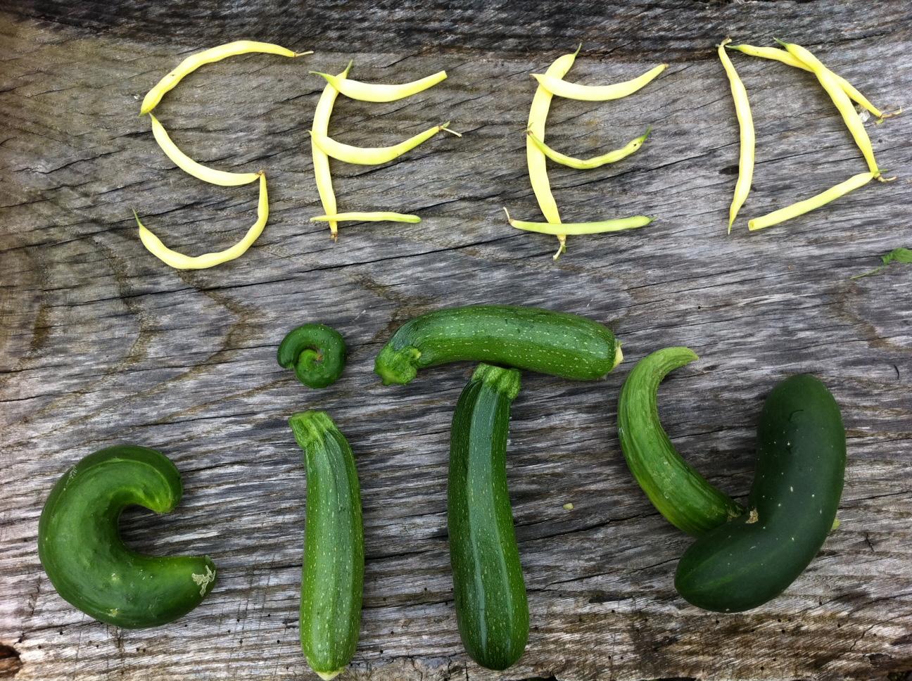 seedcity-vegetable-art.jpg