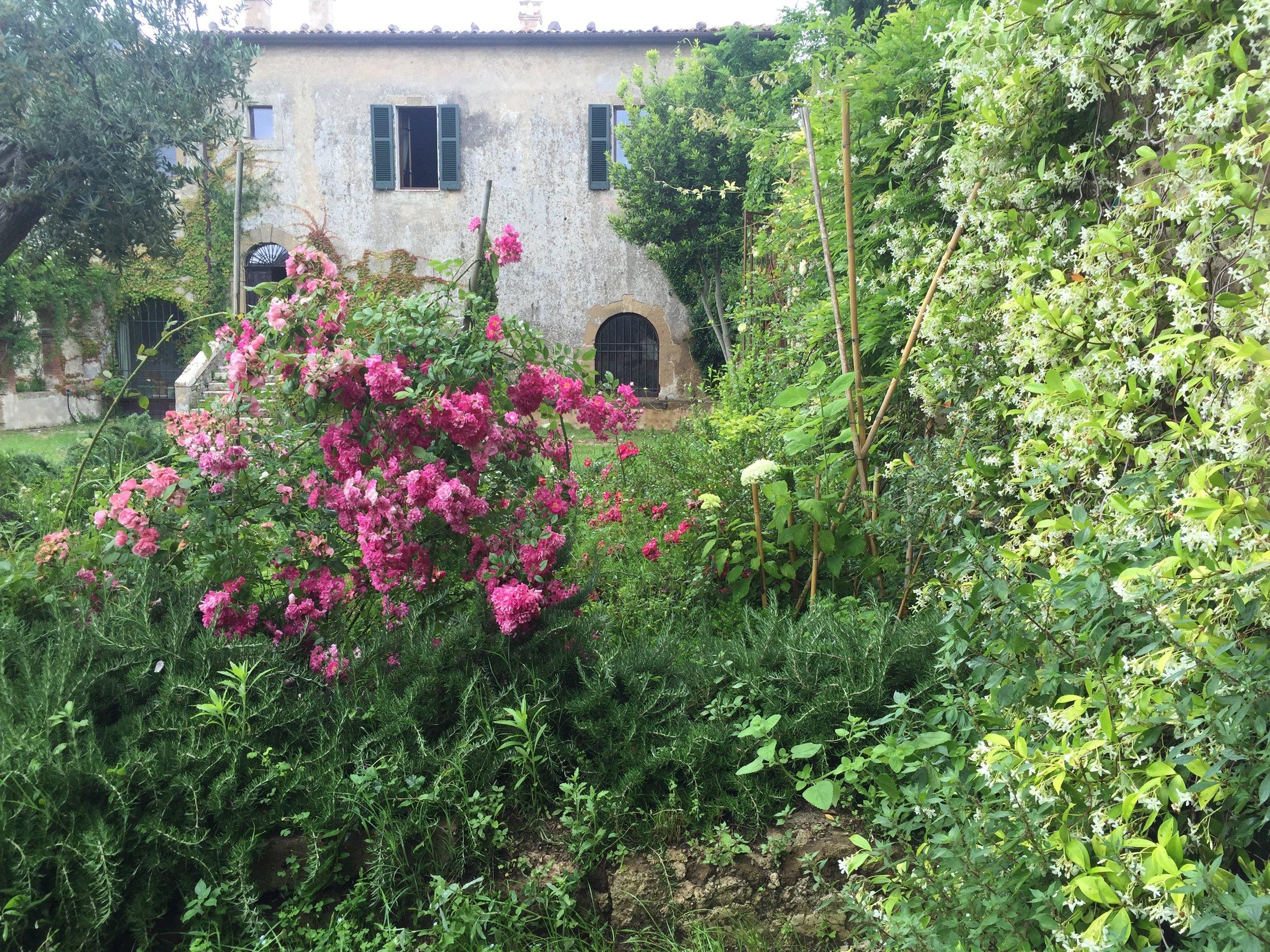 Garden Venetia - 1 of 38 (9).jpg