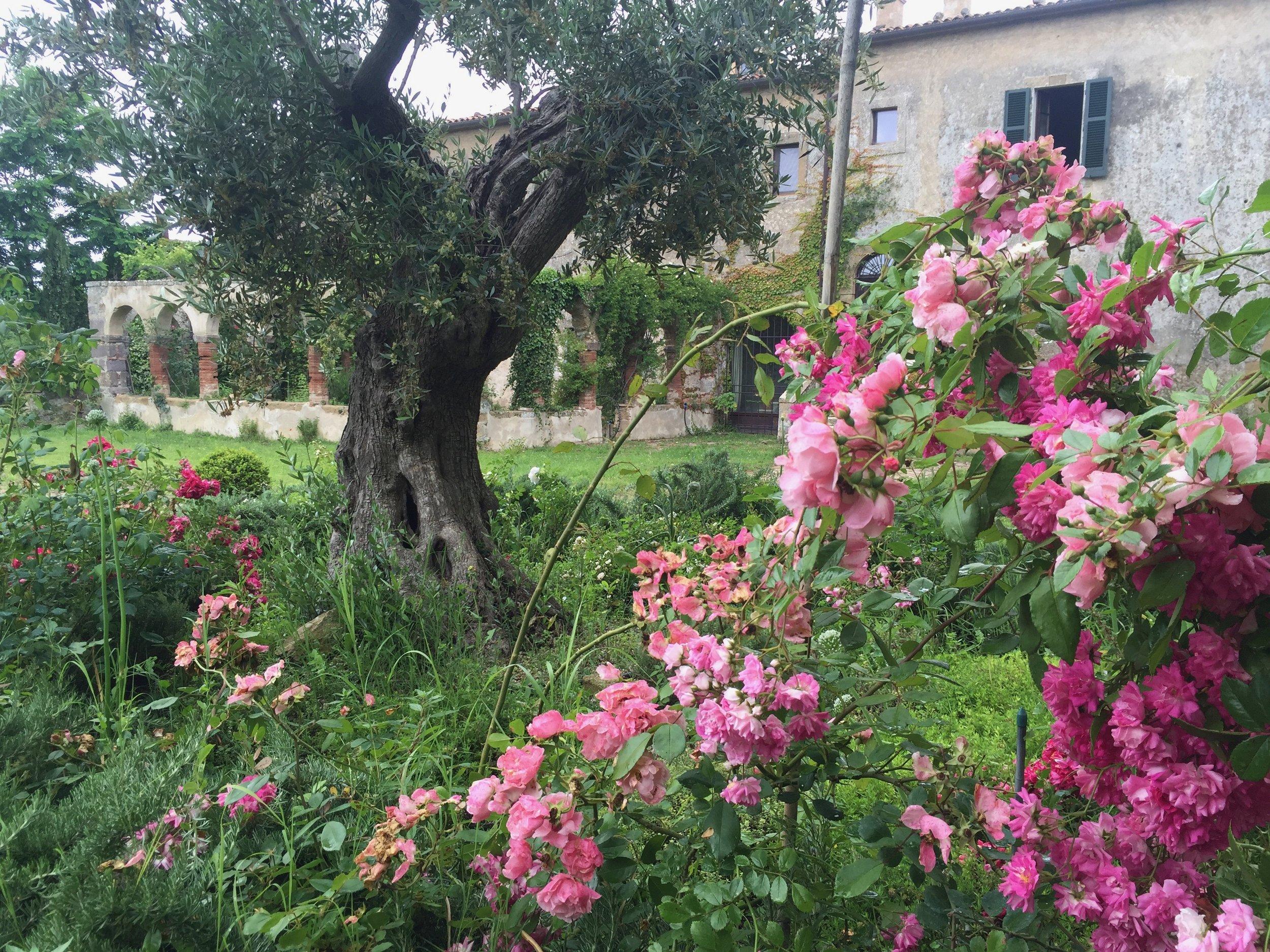 Garden Venetia - 1 of 38 (10).jpg