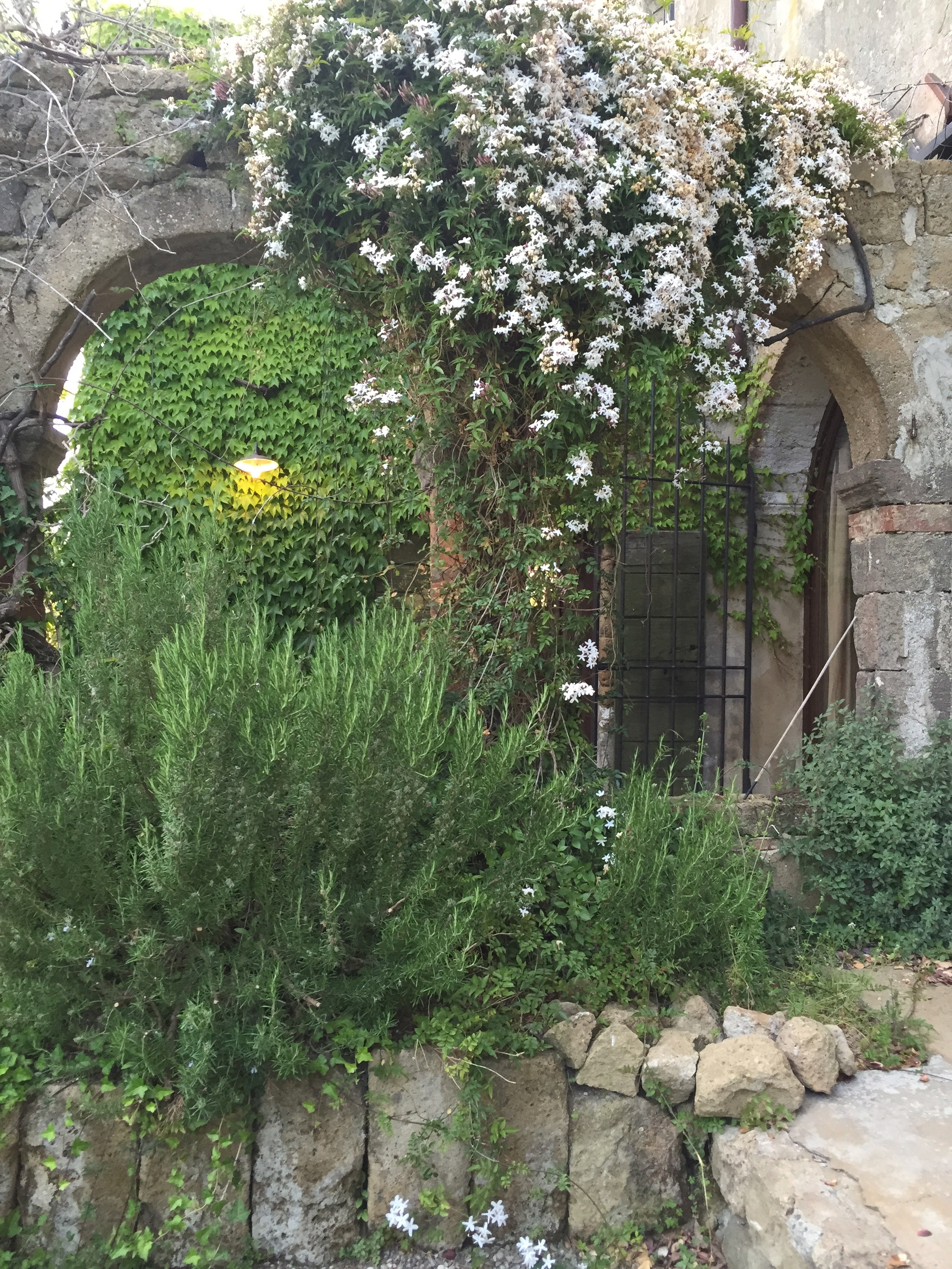 Garden Venetia - 1 of 38 (11).jpg