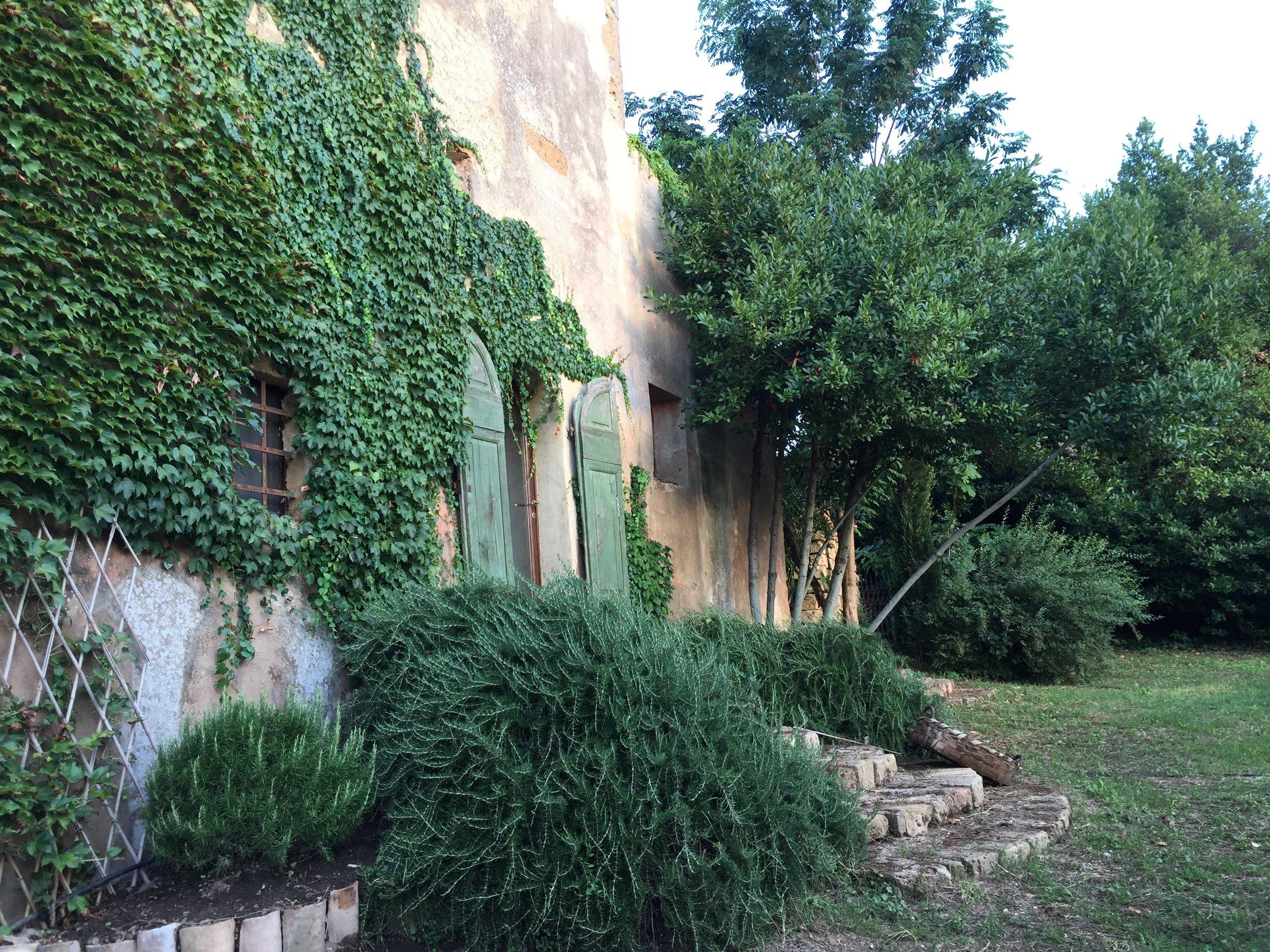 Garden Venetia - 1 of 38 (21).jpg