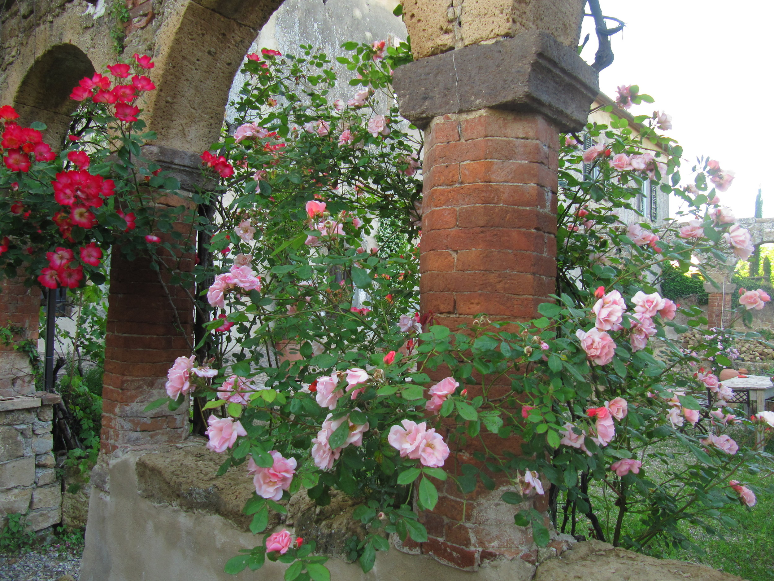 Garden Venetia - 1 of 38 (23).jpg