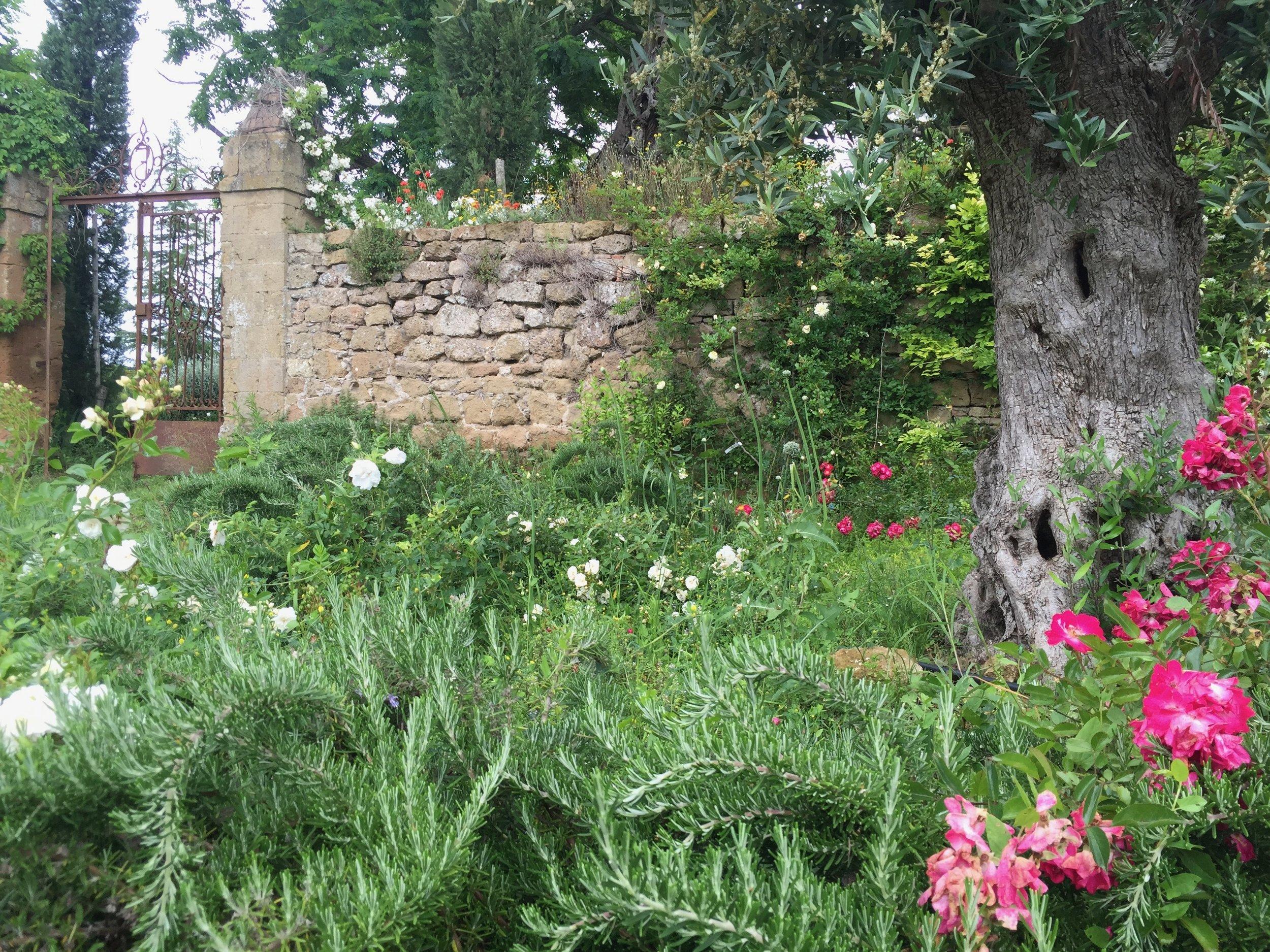 Garden Venetia - 1 of 38 (24).jpg