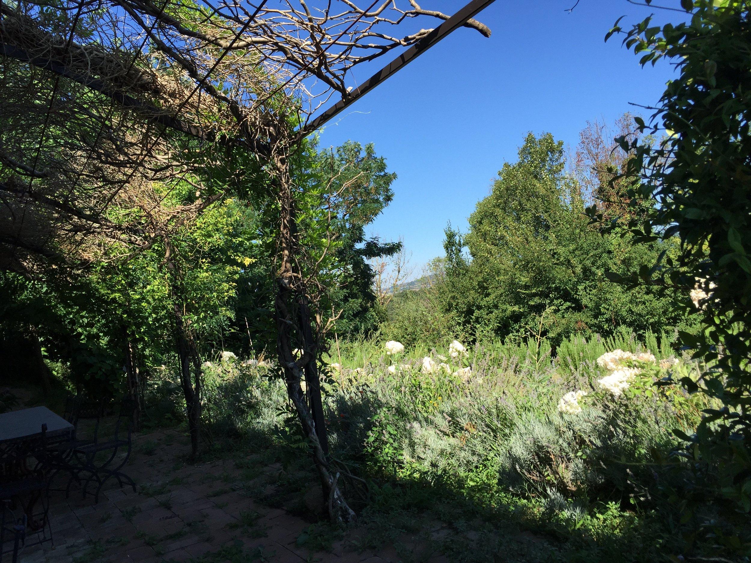 Garden Venetia - 1 of 38 (29).jpg