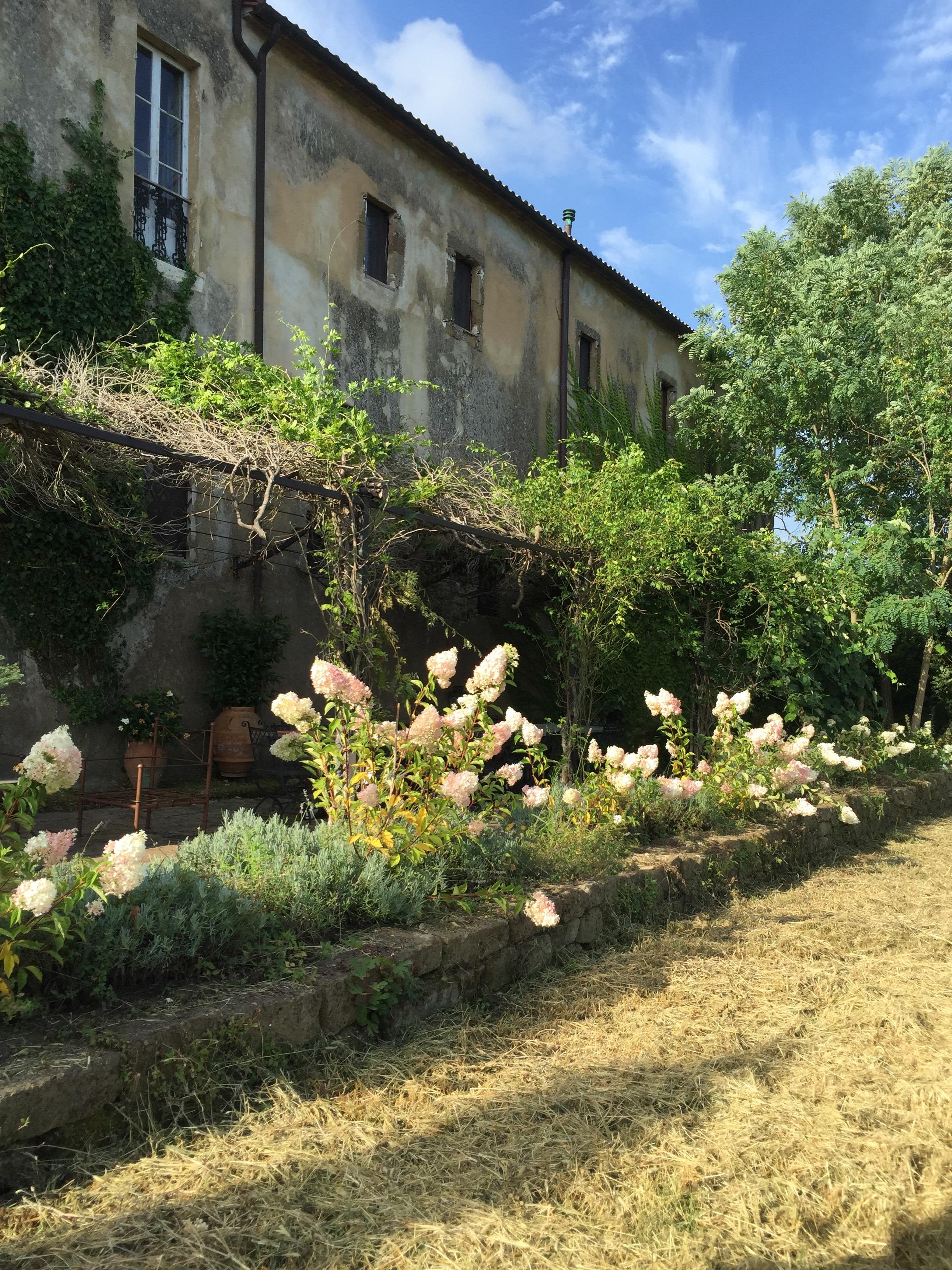 Garden Venetia - 1 of 38 (35).jpg
