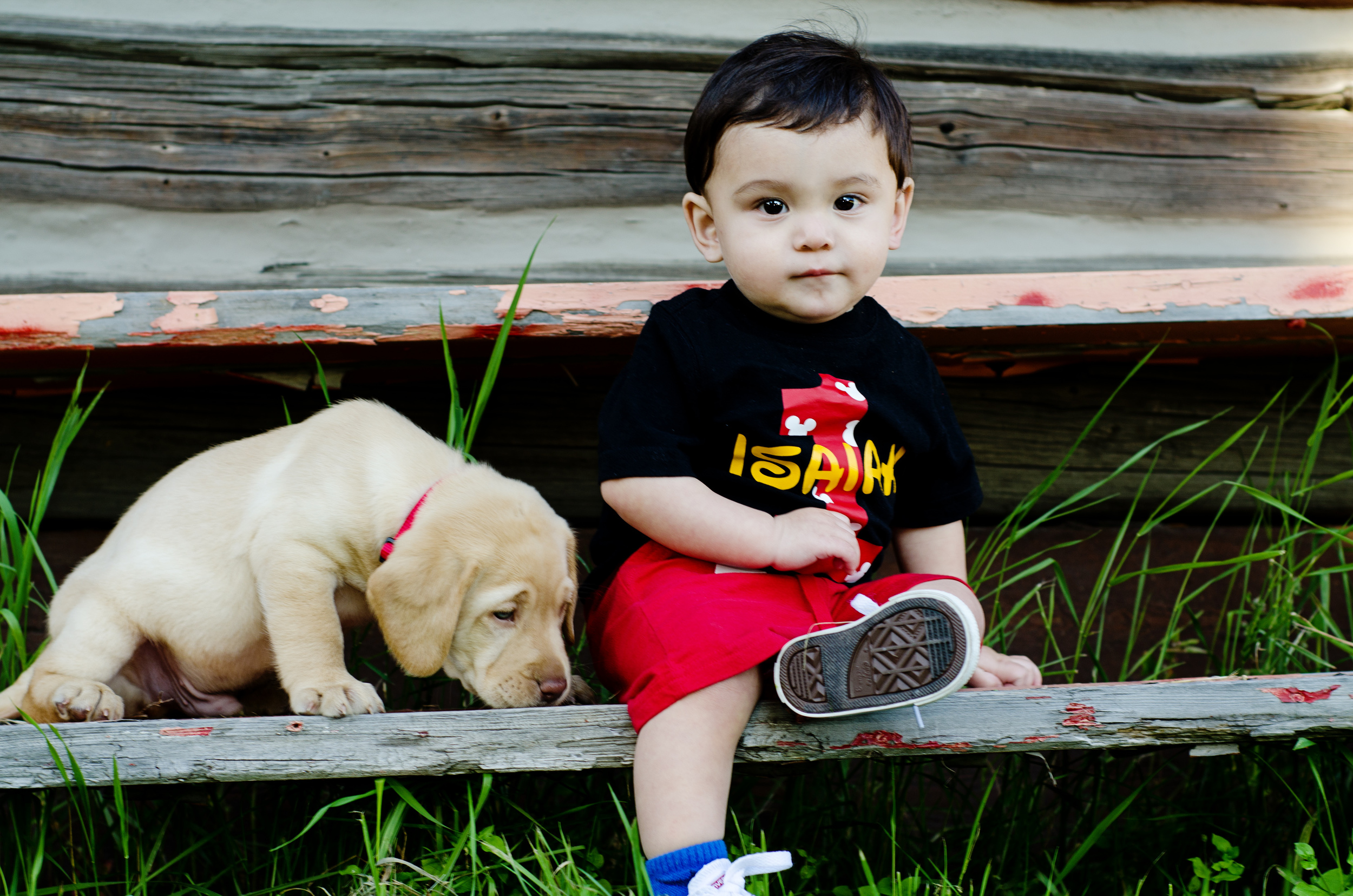 baby photo with puppy - fairbanks alaska photographer - pioneer park photos