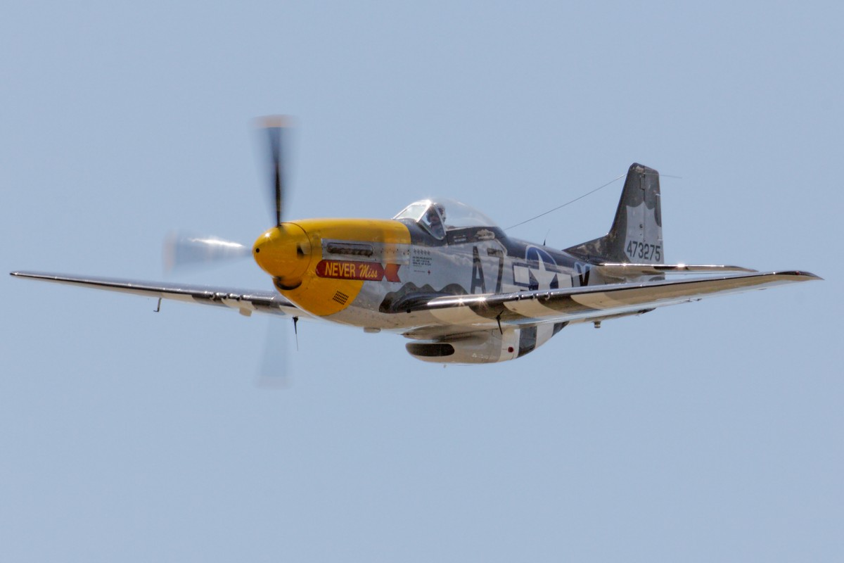 "Mark Murphy - P-51D ""Never Miss"""