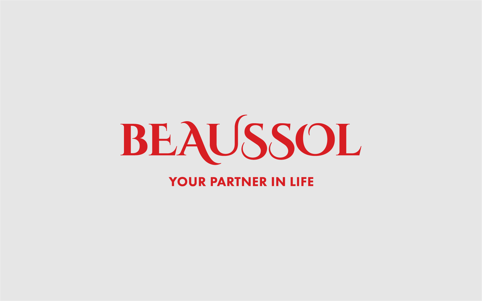 beaussol-digital-06.png