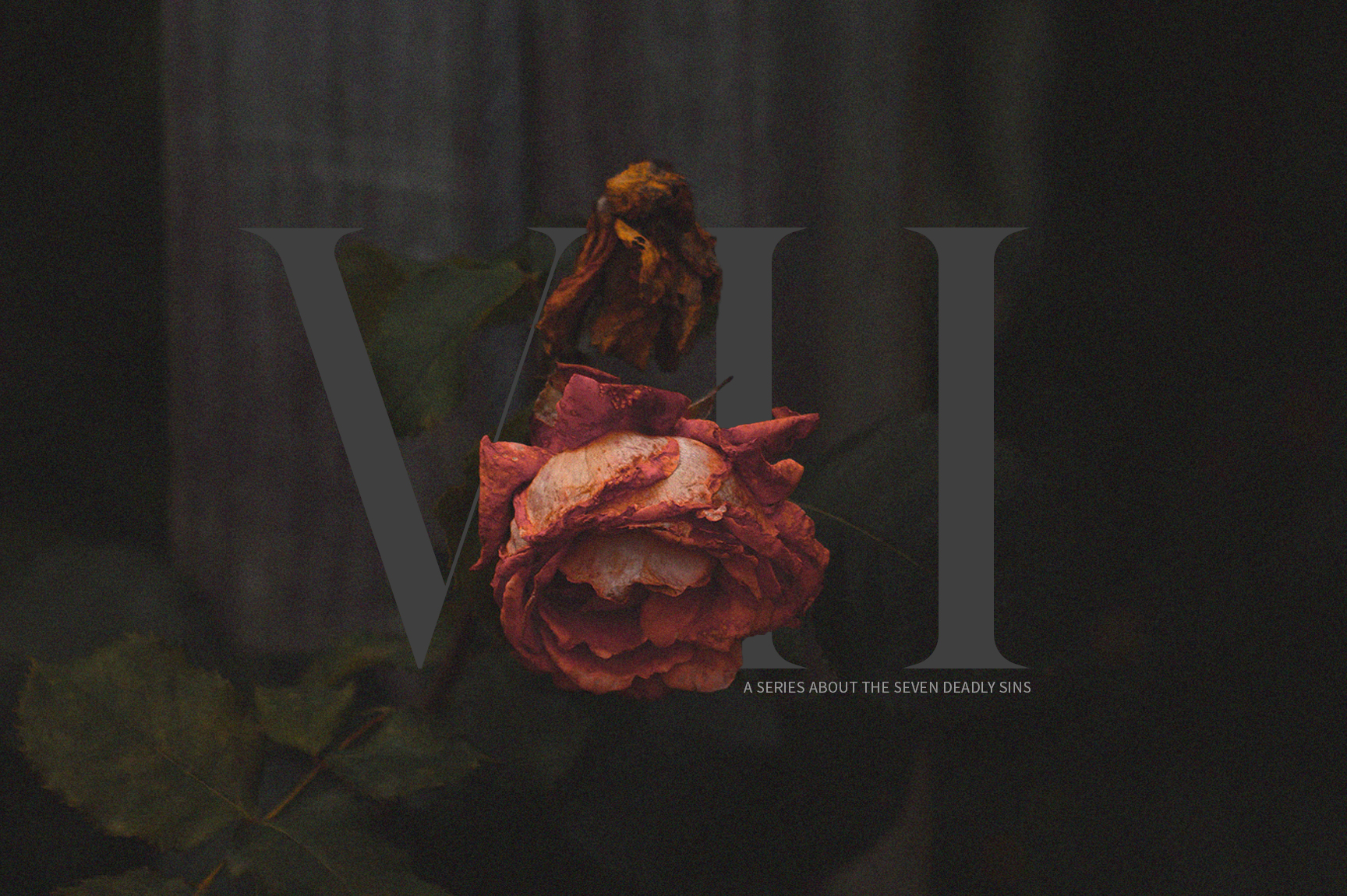 """Our church kicked off 2019 with a series called """"VII"""" talking about the seven deadly sins. We wanted to show how something beautiful like a rose could become decayed and withered and eventually die; how something that is good and beautiful like sex or food or possessions can become deadly when taken out of the context of God's Word and how He calls us to live as Christians. I went with an overly dark look for the background and type so to allow the muted reds of the rose to stand out in the foreground."""