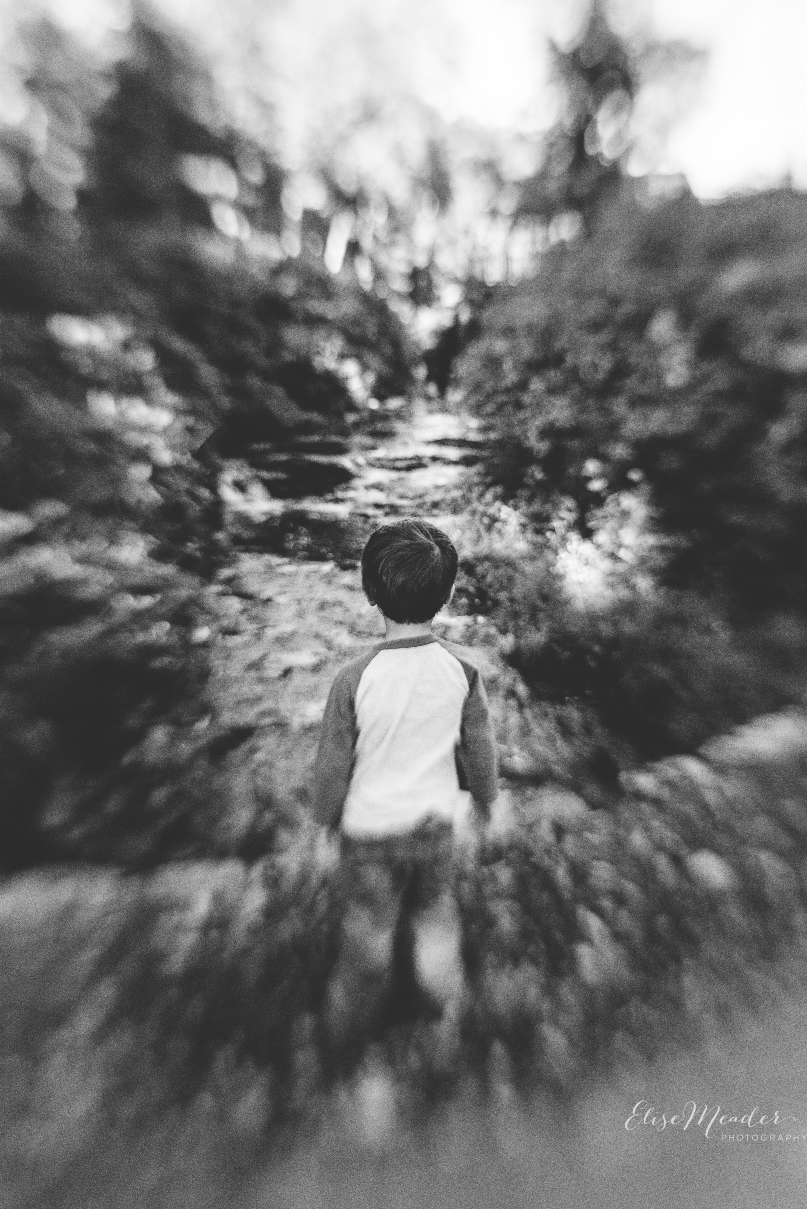 Just a boy admiring a waterfall... the lensbaby makes everything look extraordinary.