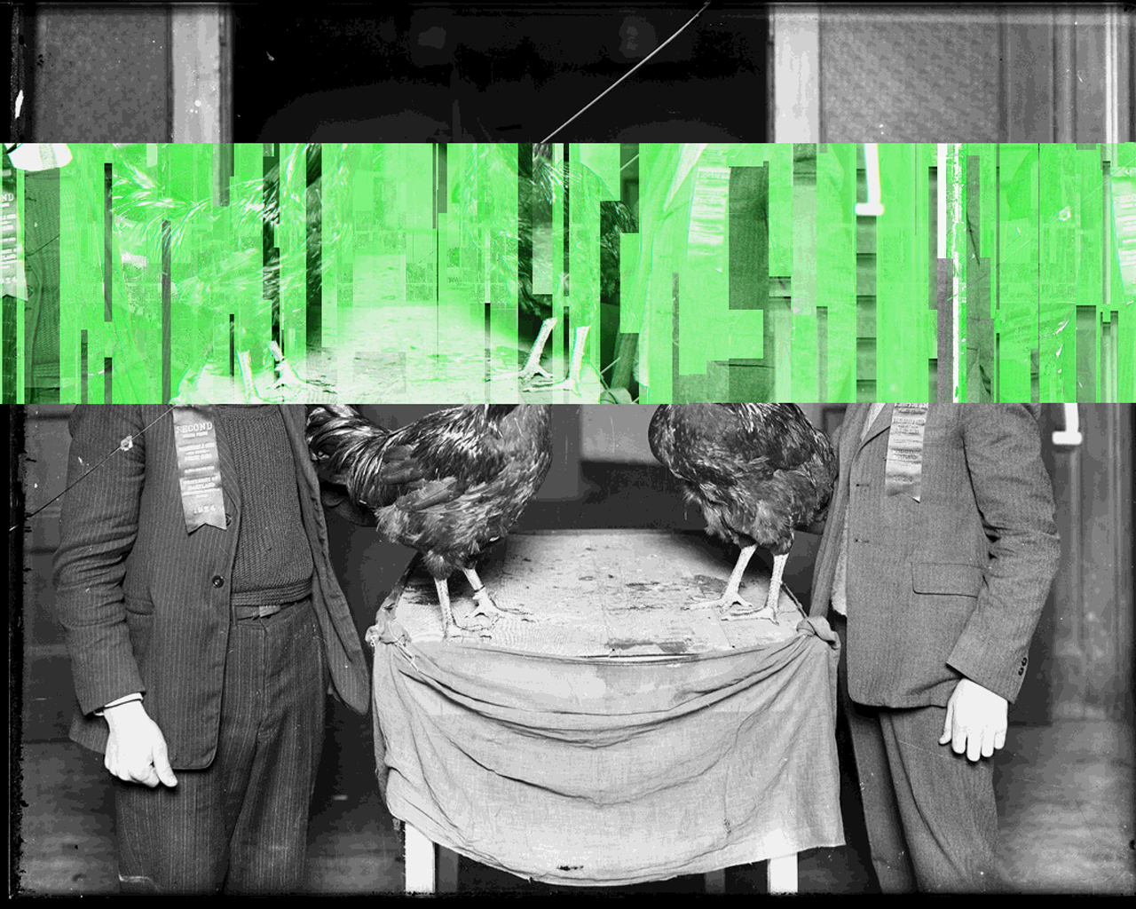 Hughes Remix Series, Untitled (green men with roosters), 2013.