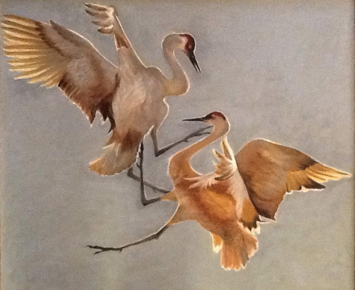 "Wanda Frey, ""Sandhill Cranes"""