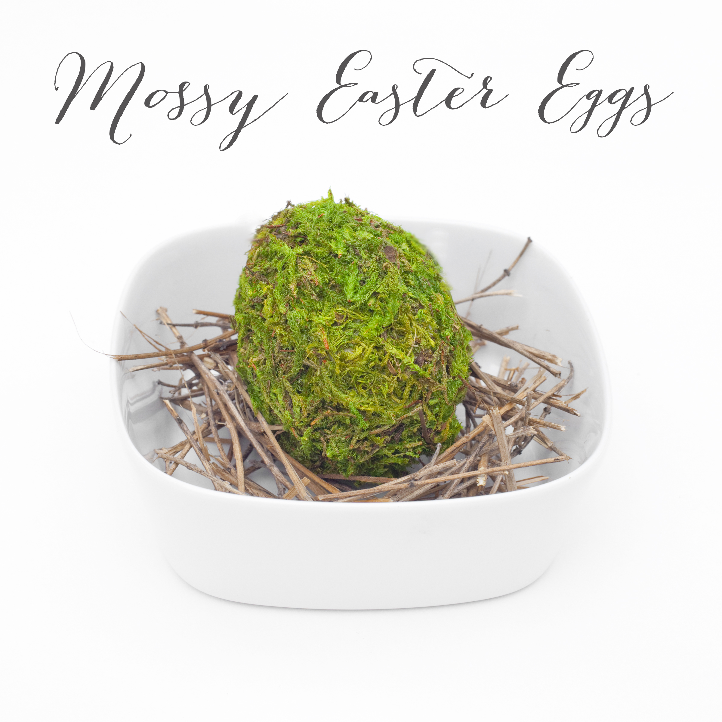 Mossy Easter Egg Decorating