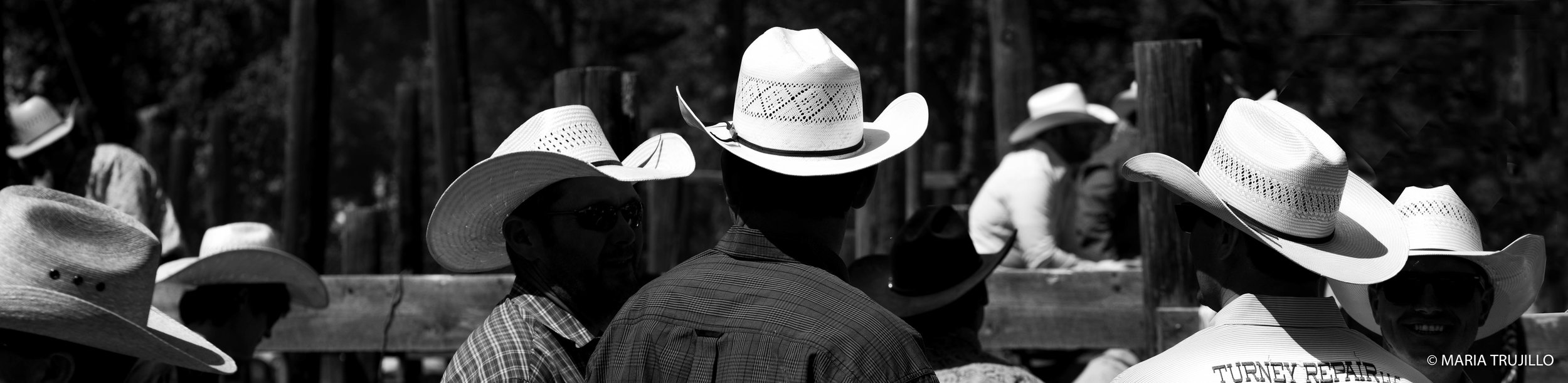 augusta rodeo 2016-7.jpg