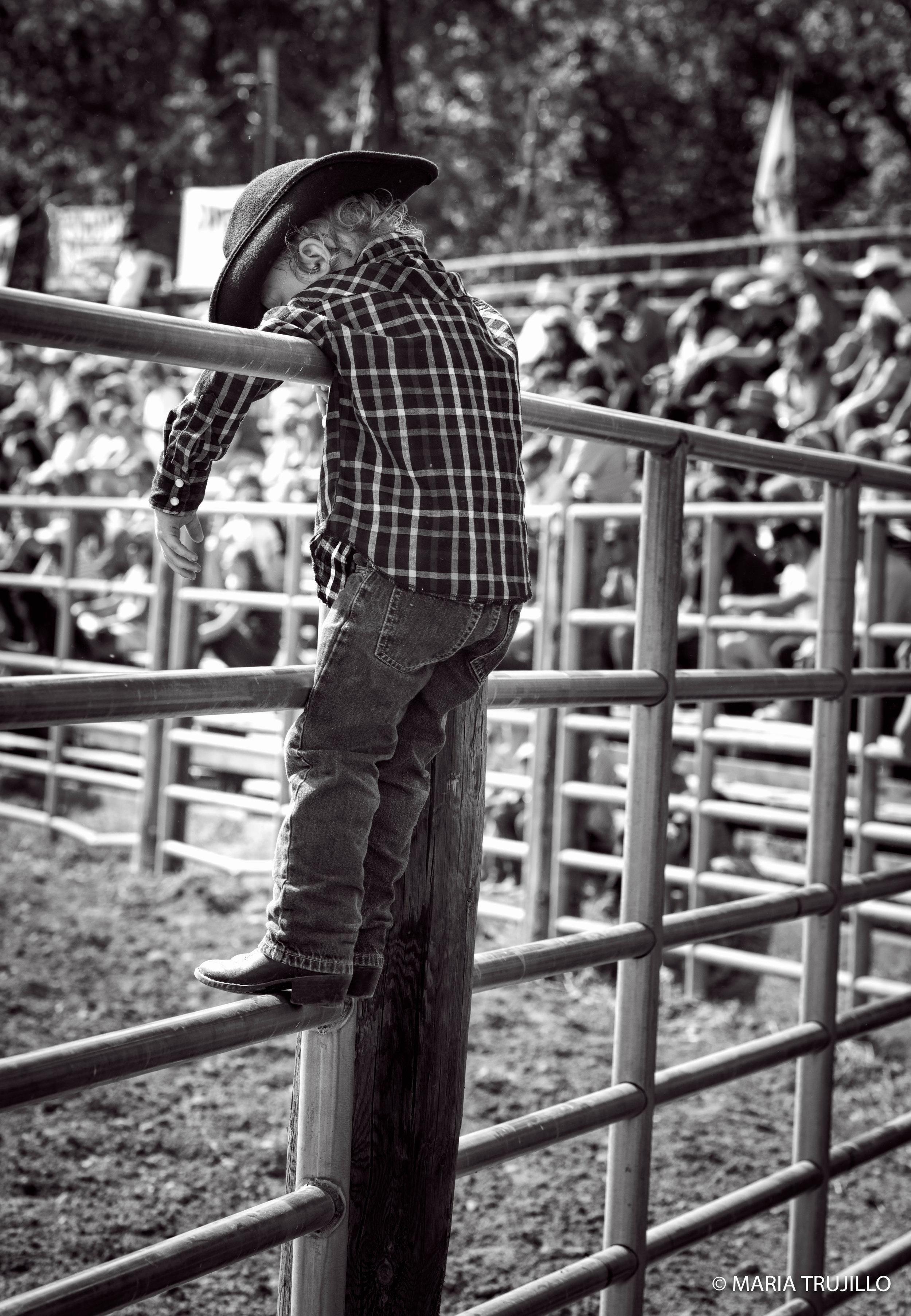 augusta rodeo 2016-11.jpg