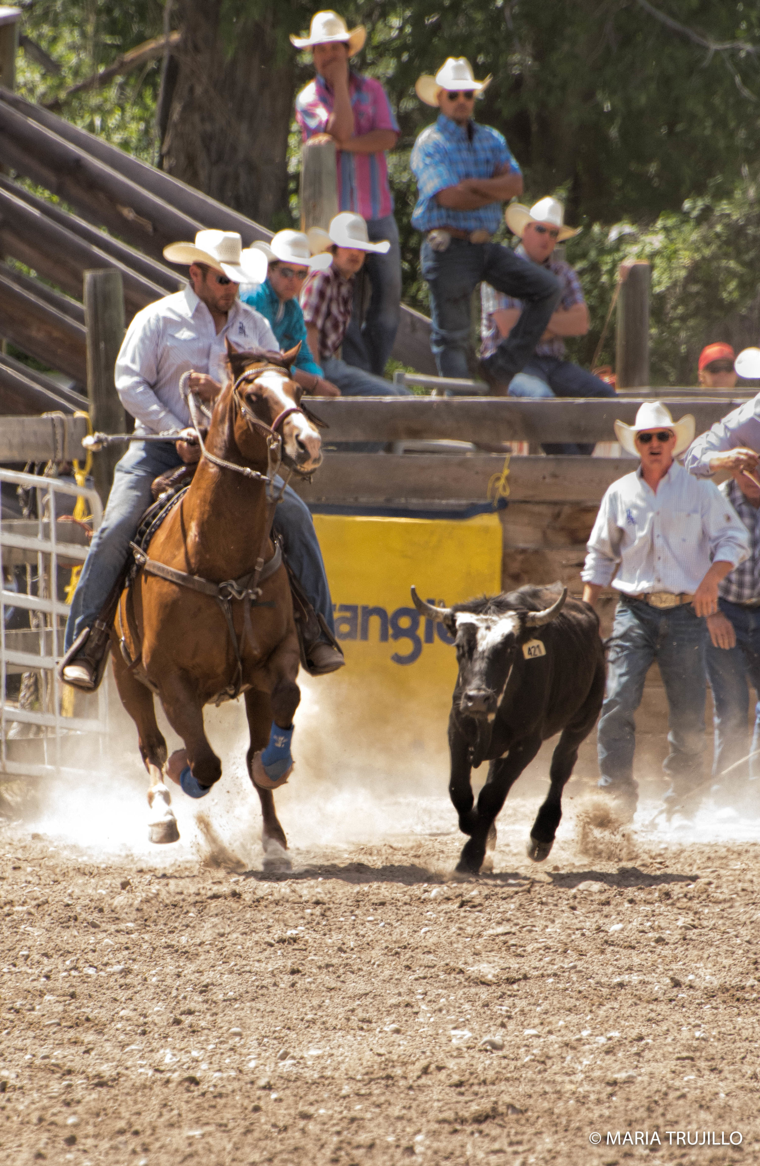 augusta rodeo 2016-48.jpg