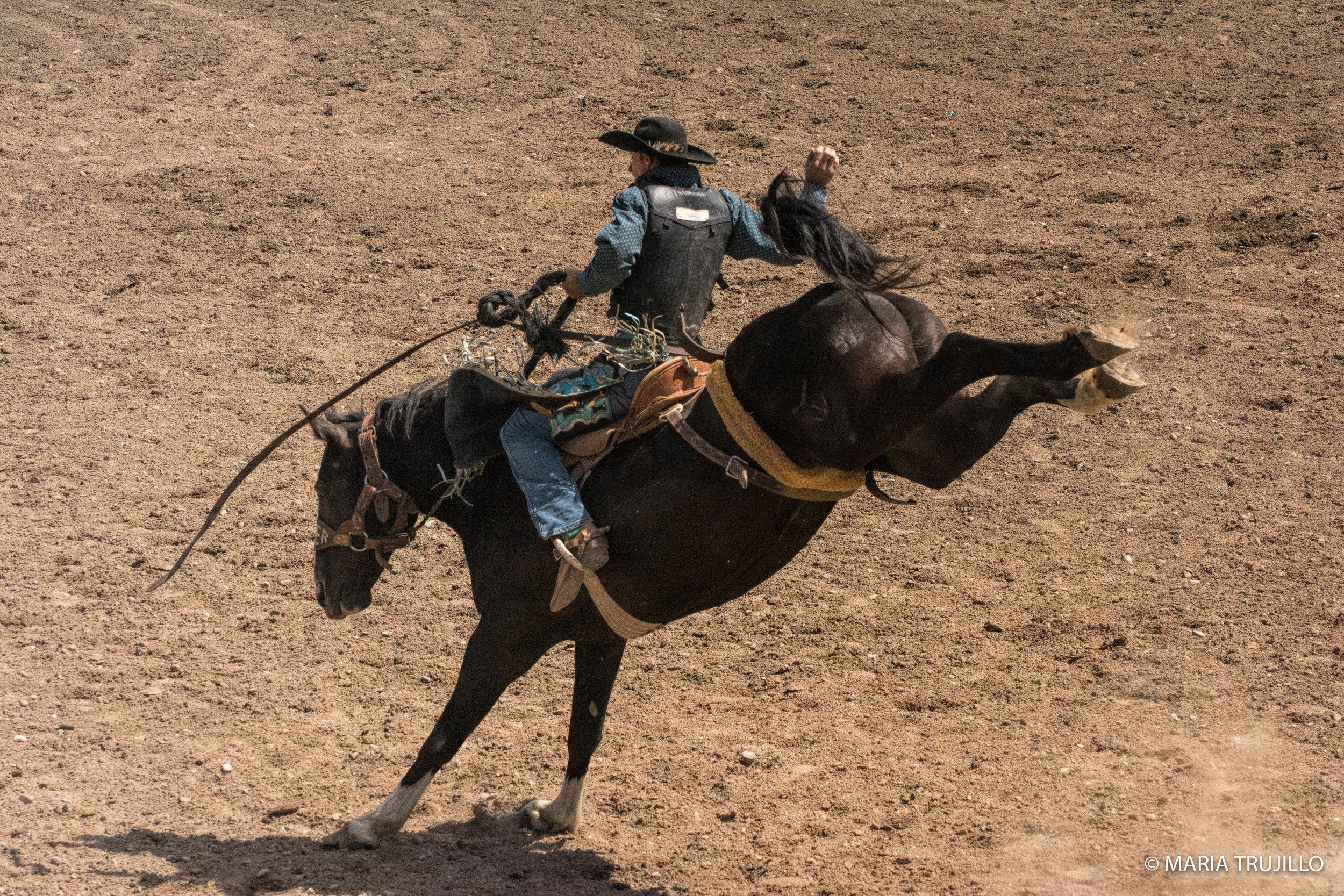 augusta rodeo 2016-54.jpg