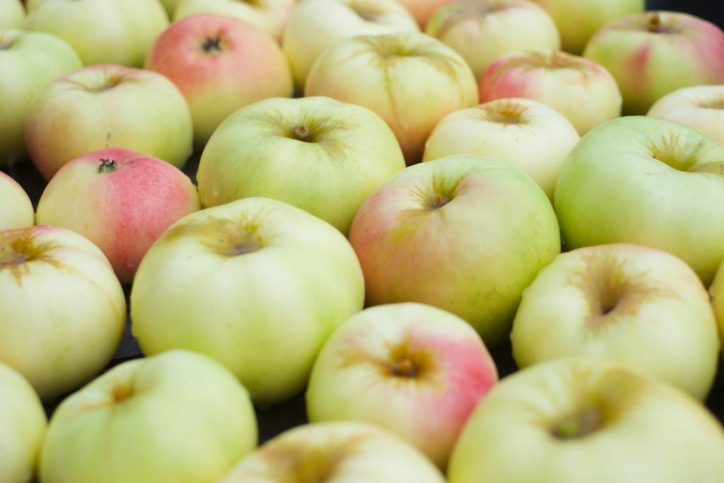 Just nu kan man plocka bär och frukt i trädgården igen. Så lyxigt, massa gratis mat som bara finns där för oss. Dessutom väldigt trevligt att titta på.