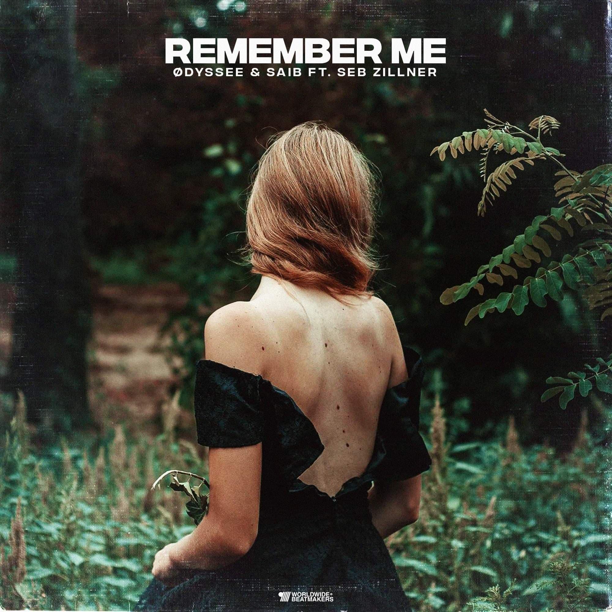 ØDYSSEE & Saib feat. Seb Zillner - Remember Me   Saxophone Seb Zillner   © 2019 NINETOFIVE  Listen on   Spotify