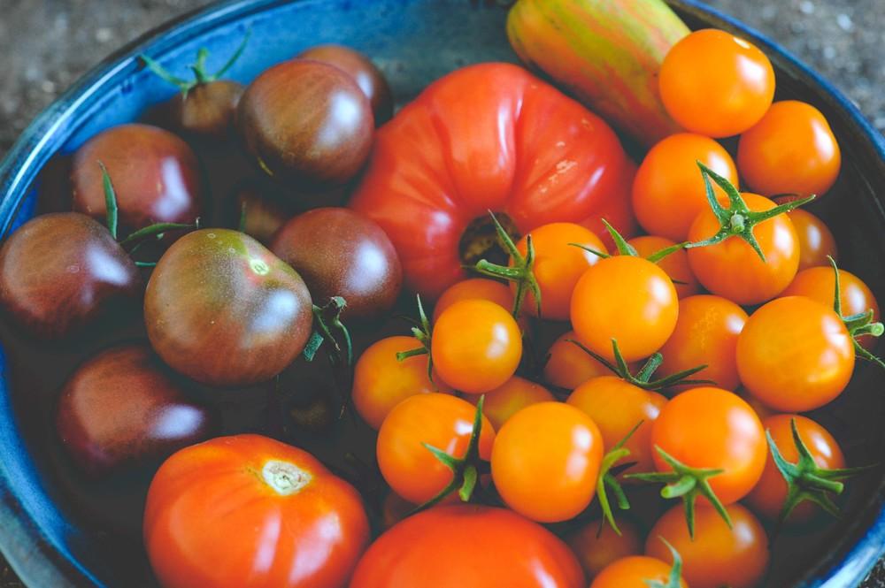 Image source: Seattle Urban Farm Co, http://www.seattleurbanfarmco.com/blog/2015/2/7/favorite-tomato-varieties-of-2014