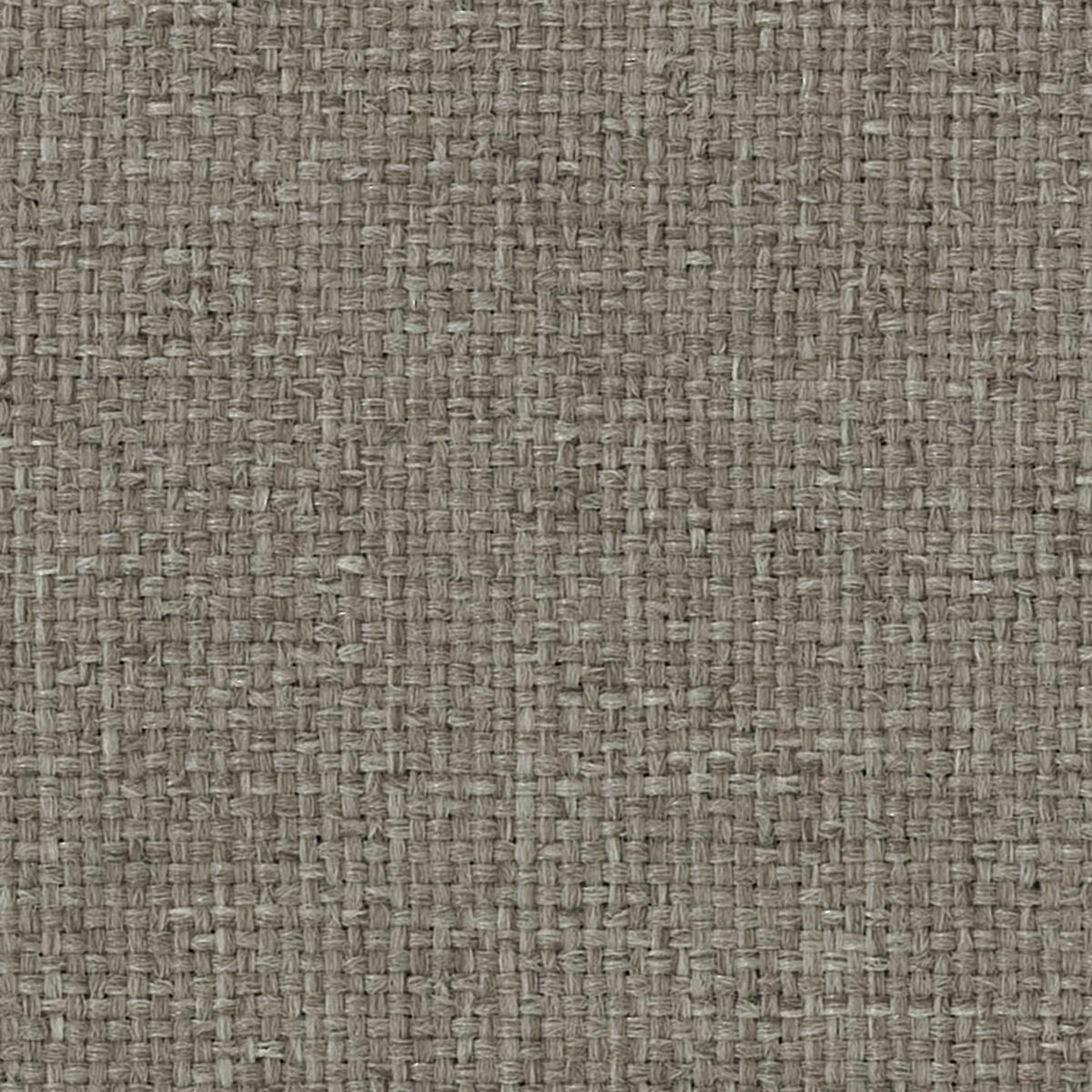 Cool Neutral •Black • Grey