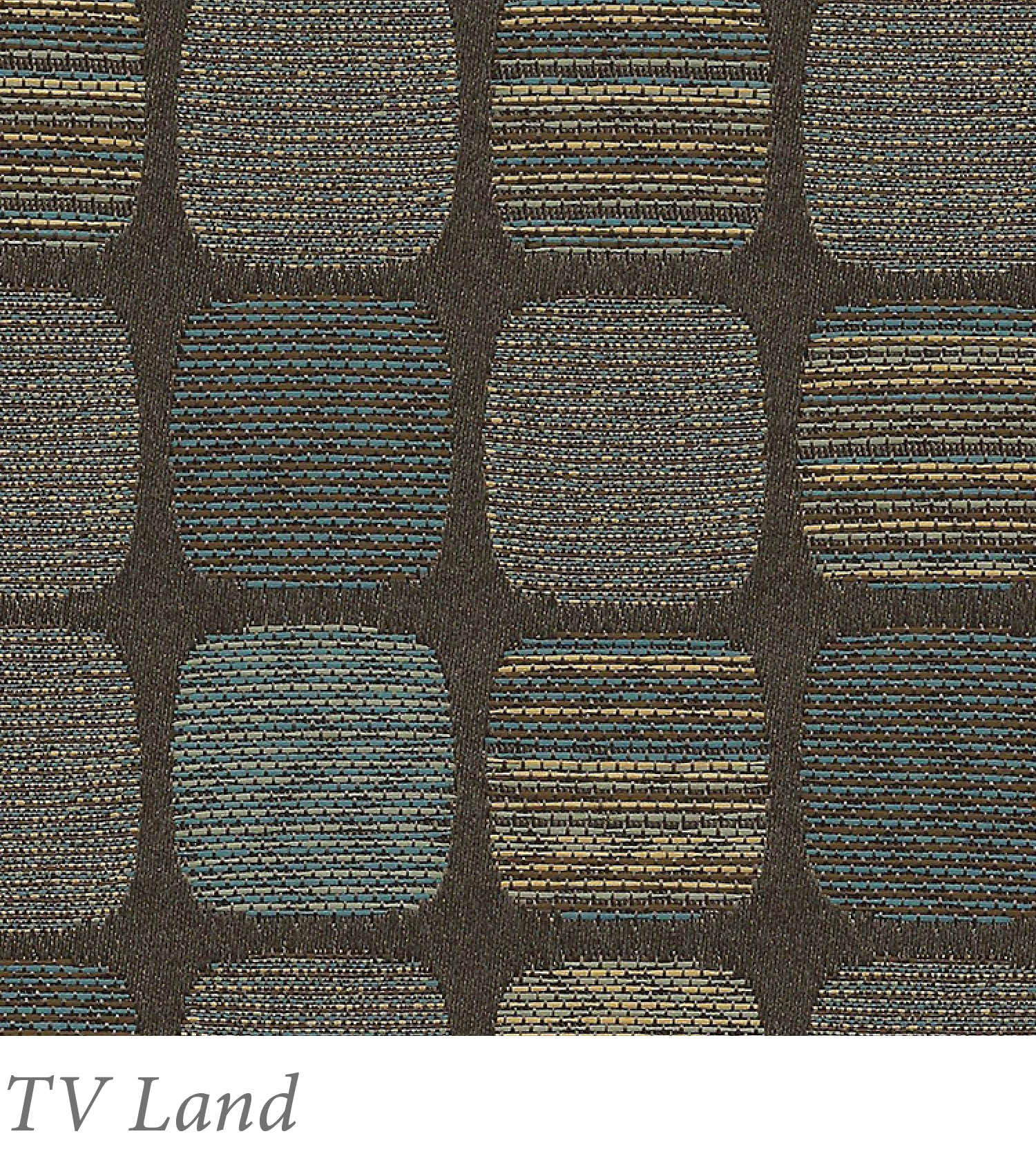 TV Land.jpg