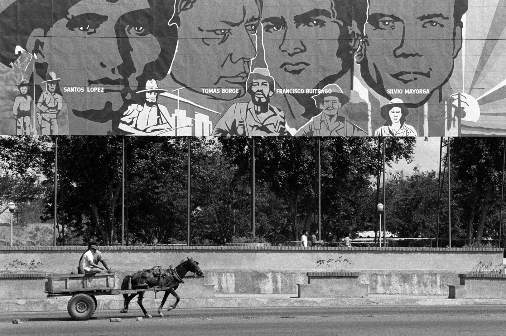 01-mural-horse 72.jpg