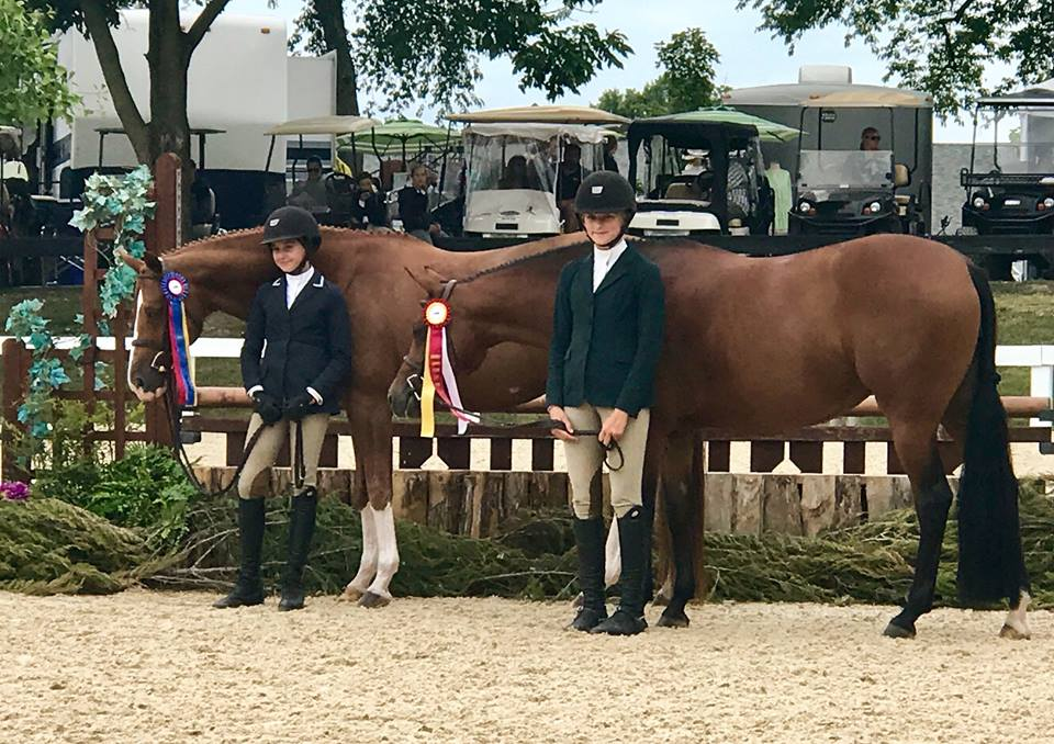 Large Pony Hunter Champion: Grabrielle Sokolow & Kingston  Reserve Large Pony Hunter Champion: Ava Peck & Persephone