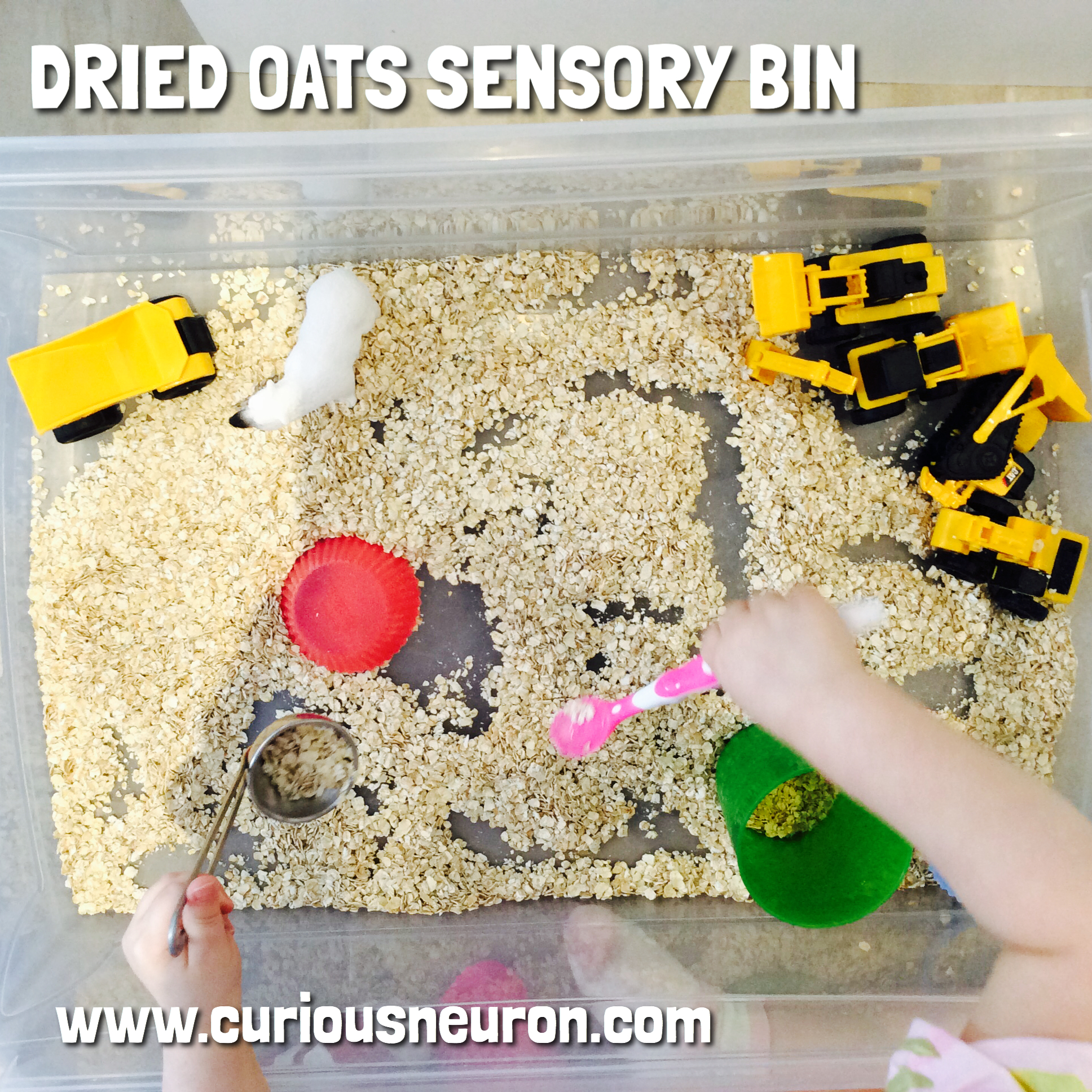 """Quick oats can also be used for a fun sensory bin for both babies and toddlers. You can use this activity to build cognitive skills by 1) hiding items in the oats, 2) showing them how to fill a cup with oats using their hands or a spoon 3) give them simple instructions like """"scoop the oats"""".   12 month cognitive milestones : Explores things in different ways, like shaking, banging, throwing, finds hidden things easily, looks at the right picture or thing when it's named, copies gestures, starts to use things correctly; for example, drinks from a cup, brushes hair, bangs two things together, puts things in a container, takes things out of a container, lets things go without help, pokes with index (pointer) finger, follows simple directions like """"pick up the toy"""".   12 month language milestones : Responds to simple spoken requests."""