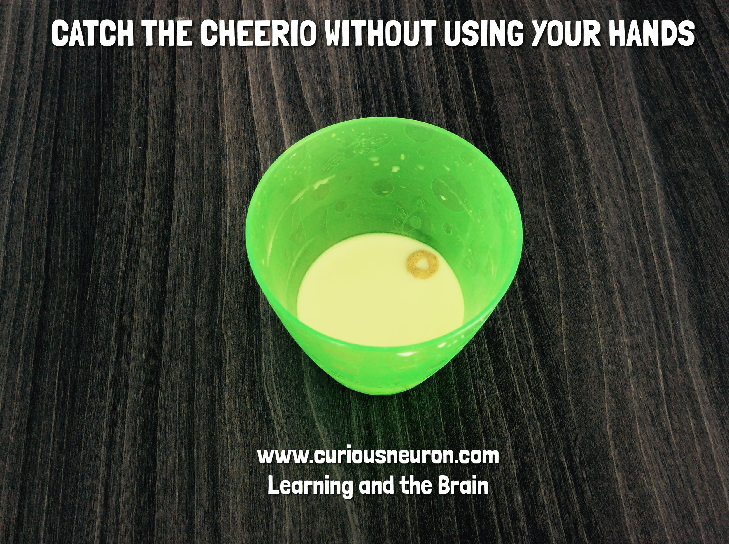 """My toddler would often leave some milk in her cup and it was a struggle to get her to finish. So I decided to throw a Cheerio inside and ask her """"Can you eat the Cheerio without using your hands?"""". This became a fun game and now, not only does she finish her milk but she asks to play the game. There was no link to development in this game....just a mom trying to get her child to finish their milk!"""