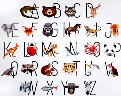 """Manufacturer: Hoffman Collection: Zookeeper Fabric: Animal Alphabet 37"""" Panel Prism Fabric Type: Quilting Cotton Dimensions: 37"""" x 43"""""""