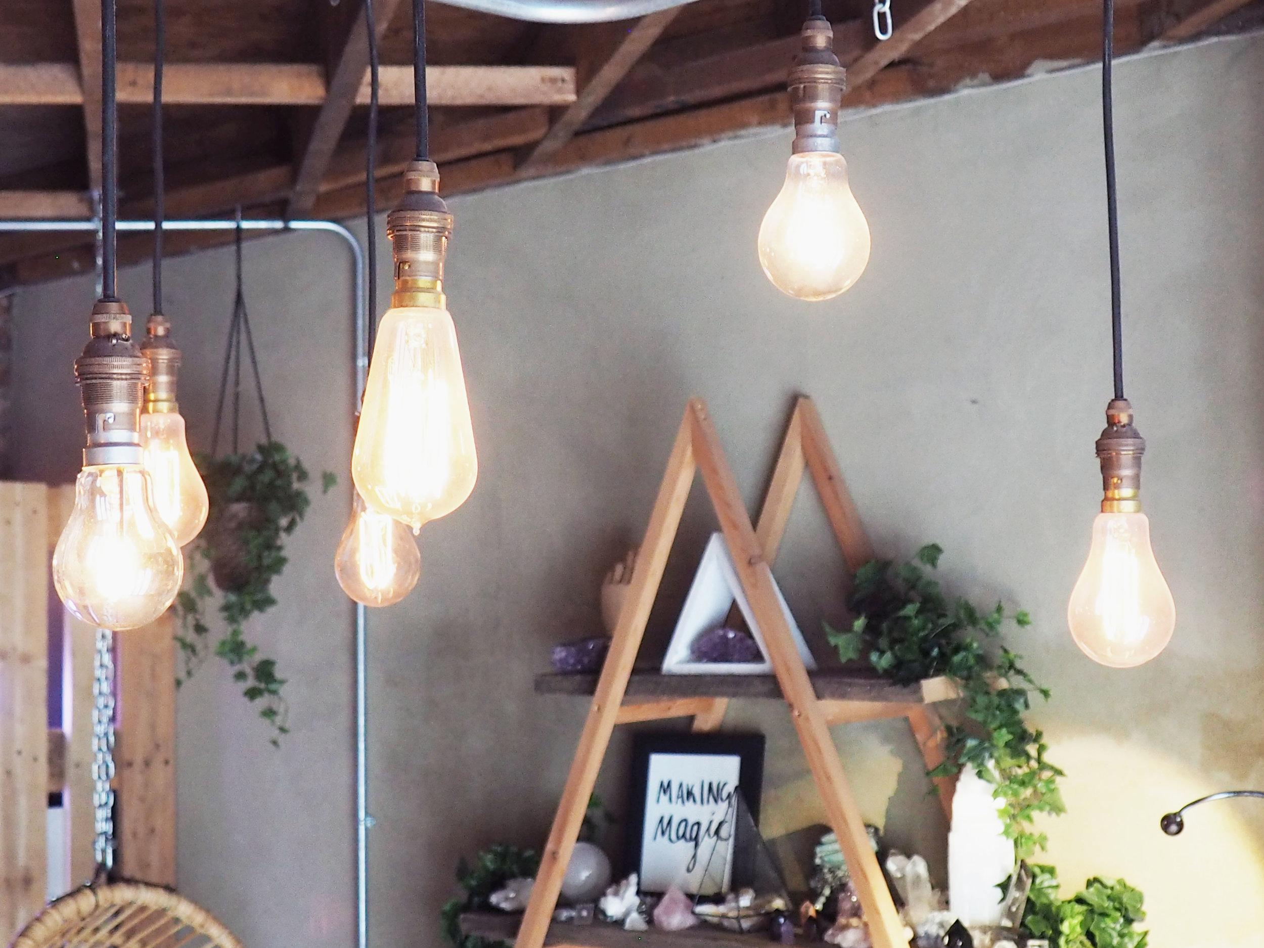 Copy of bulbs.jpg