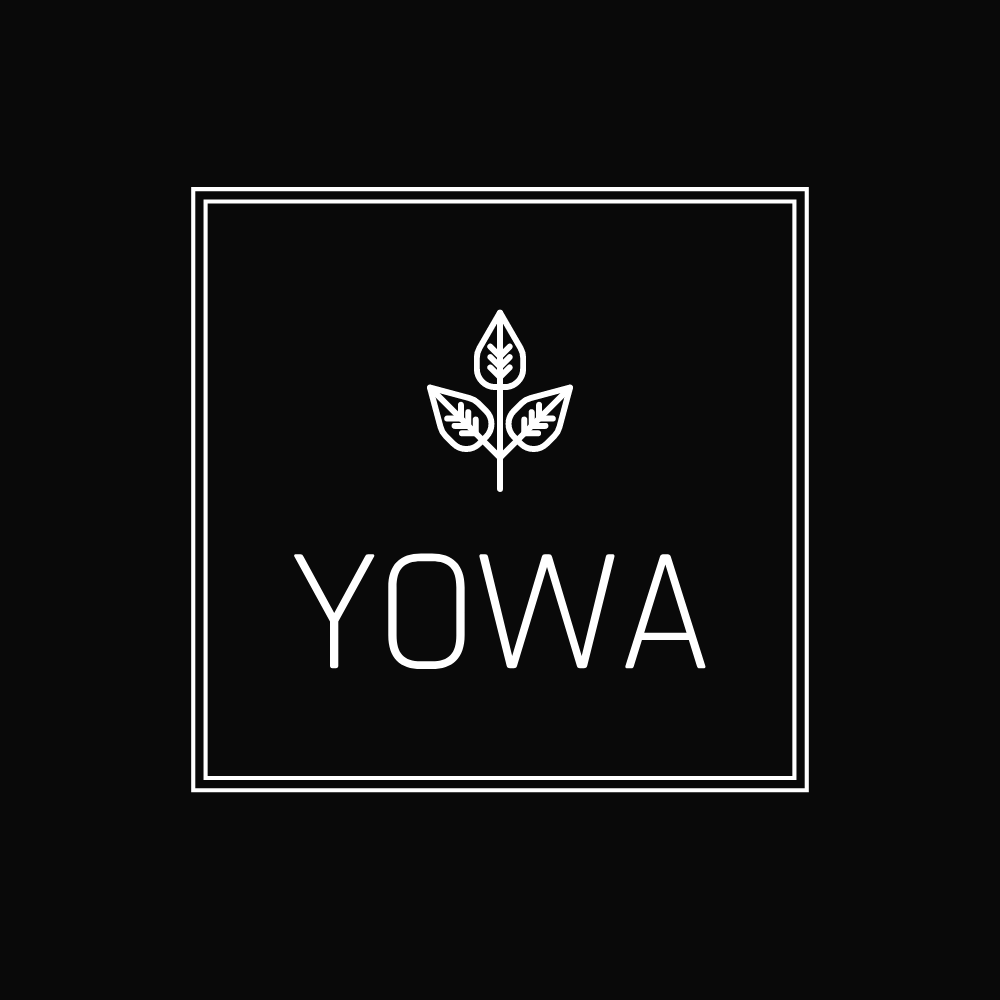 your wellness academy™️ - The worlds most affordable & accessible online wellness subscription based education. Join the YOWA community for only $9.99/month
