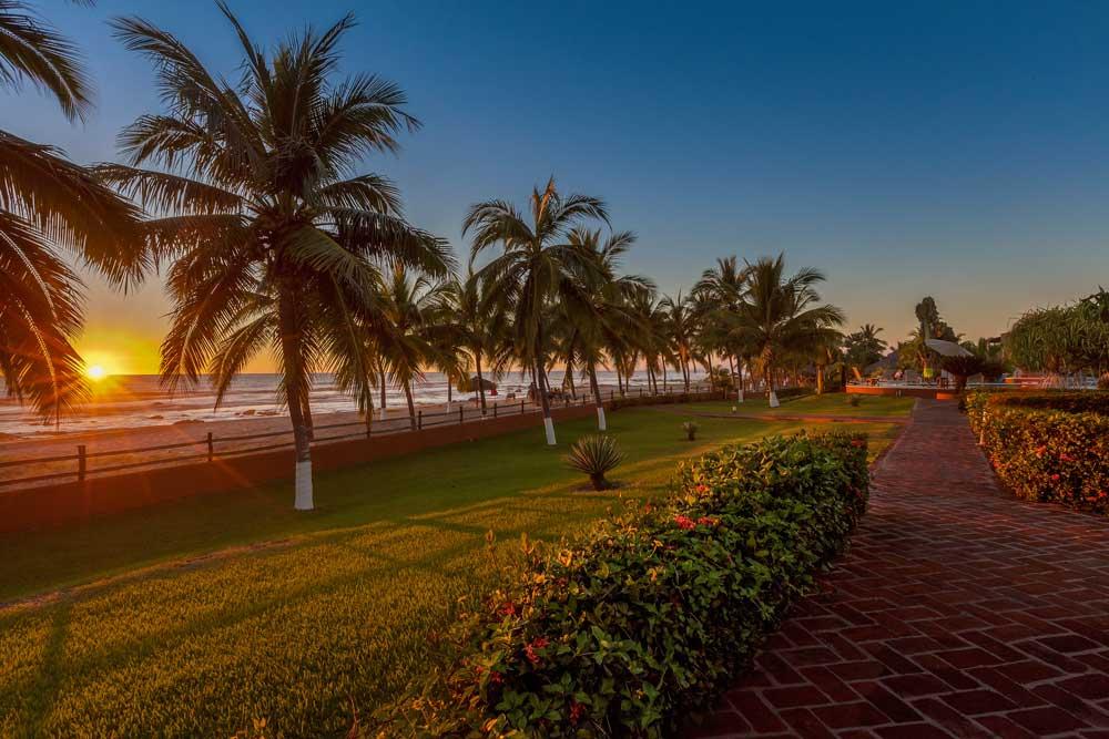 Majahua-Palms-Troncones_31.jpg