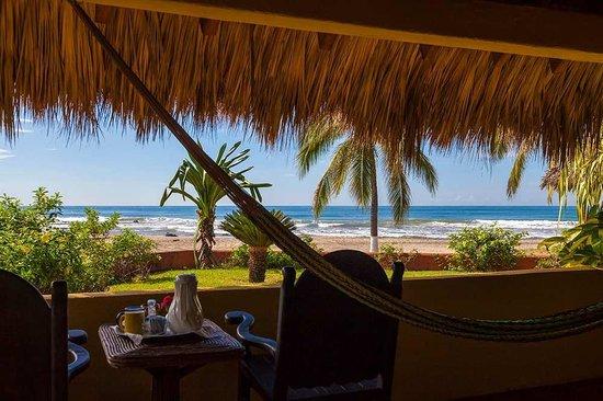 majahua-palms.jpg